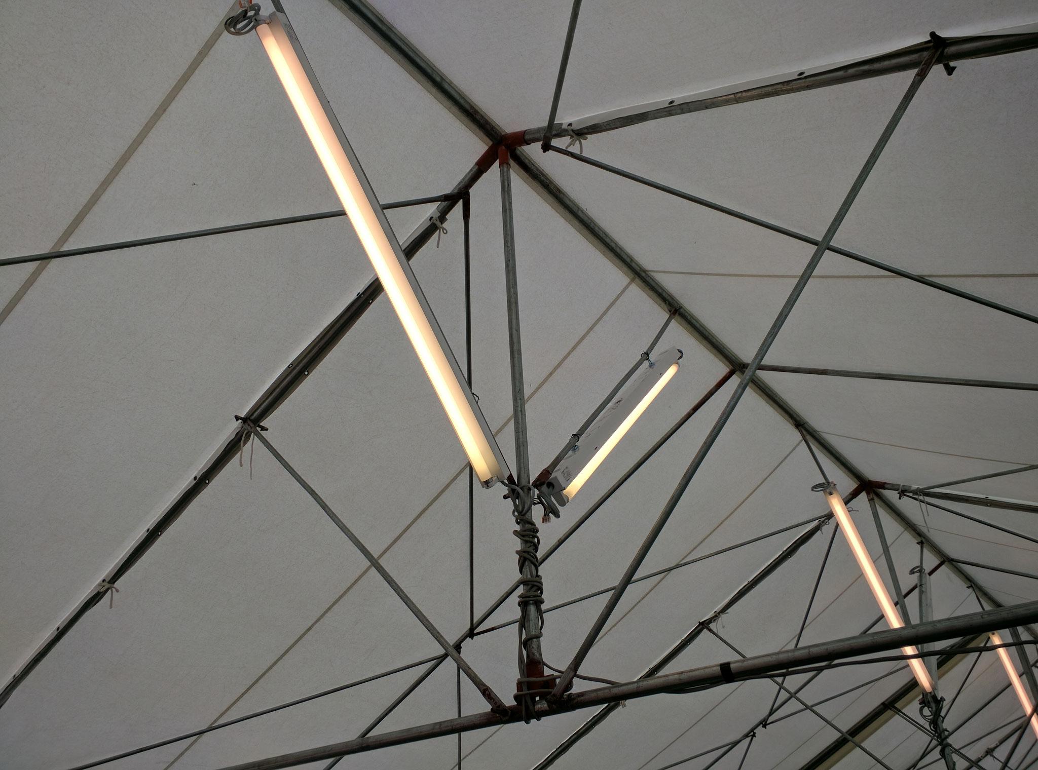 富士宮市 イベント テント内 照明器具貸出