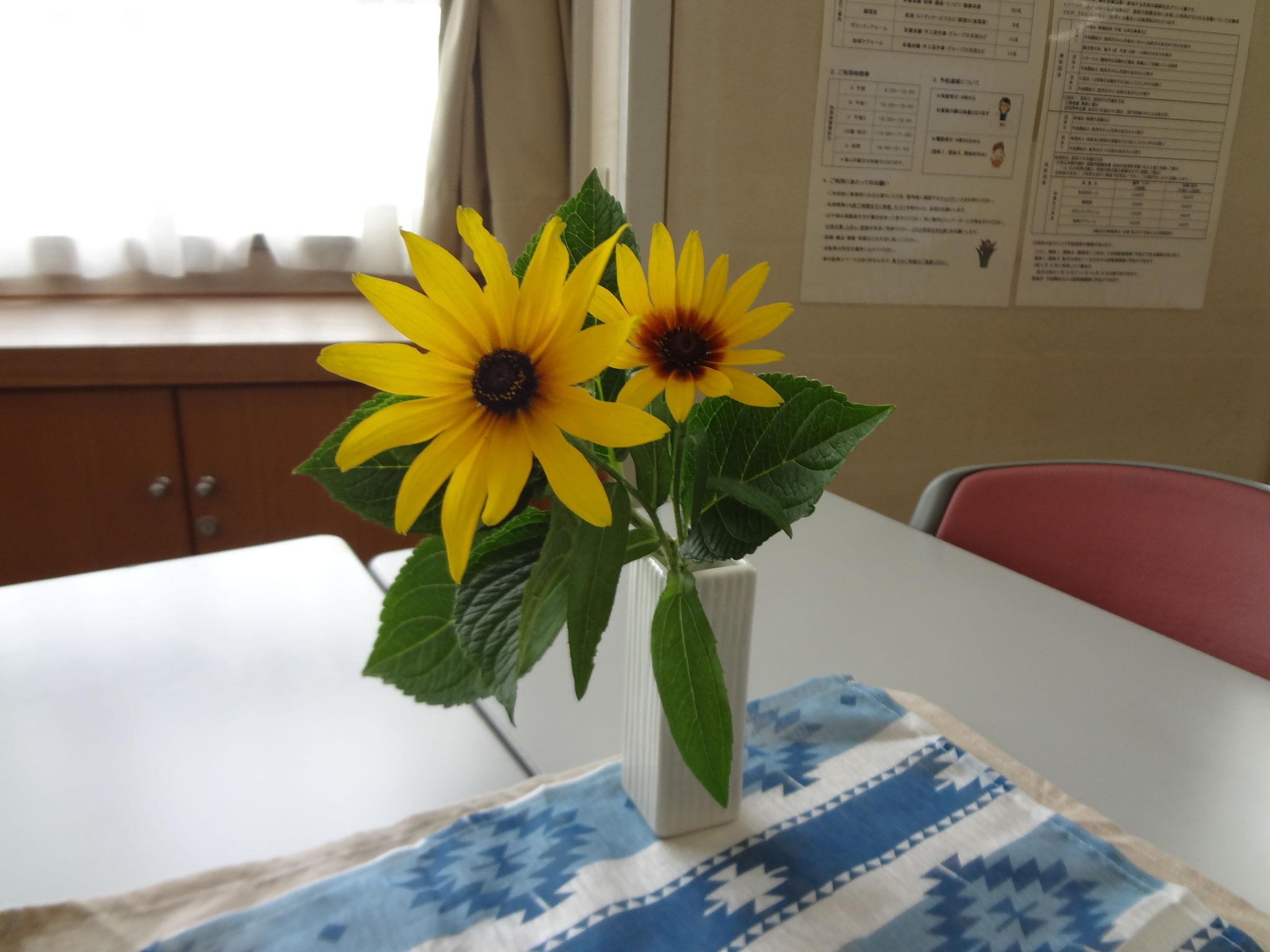 今月のお花は早くもひまわりでした。