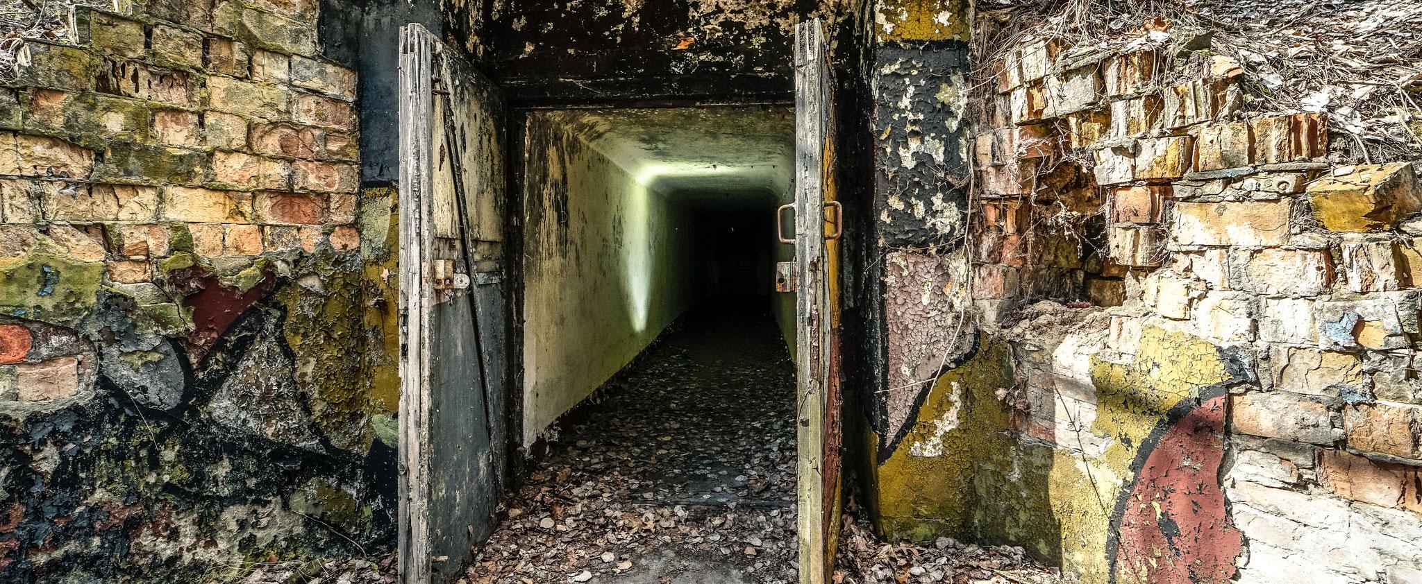 Der Bunker tief im Wald