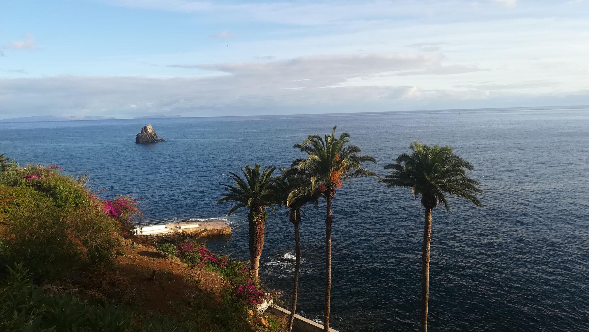 Madeira - Südküste