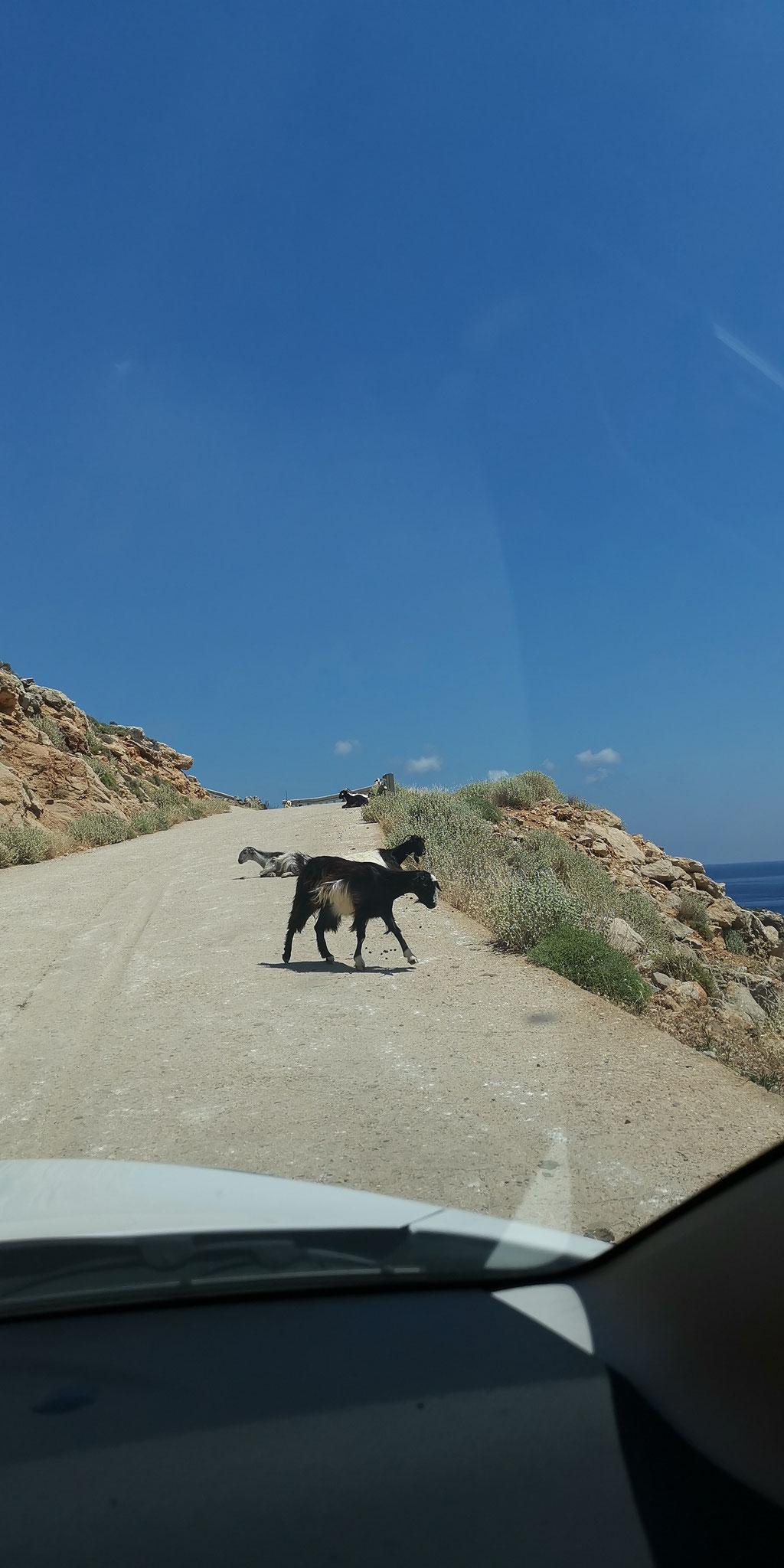 Balos Anfahrtsweg