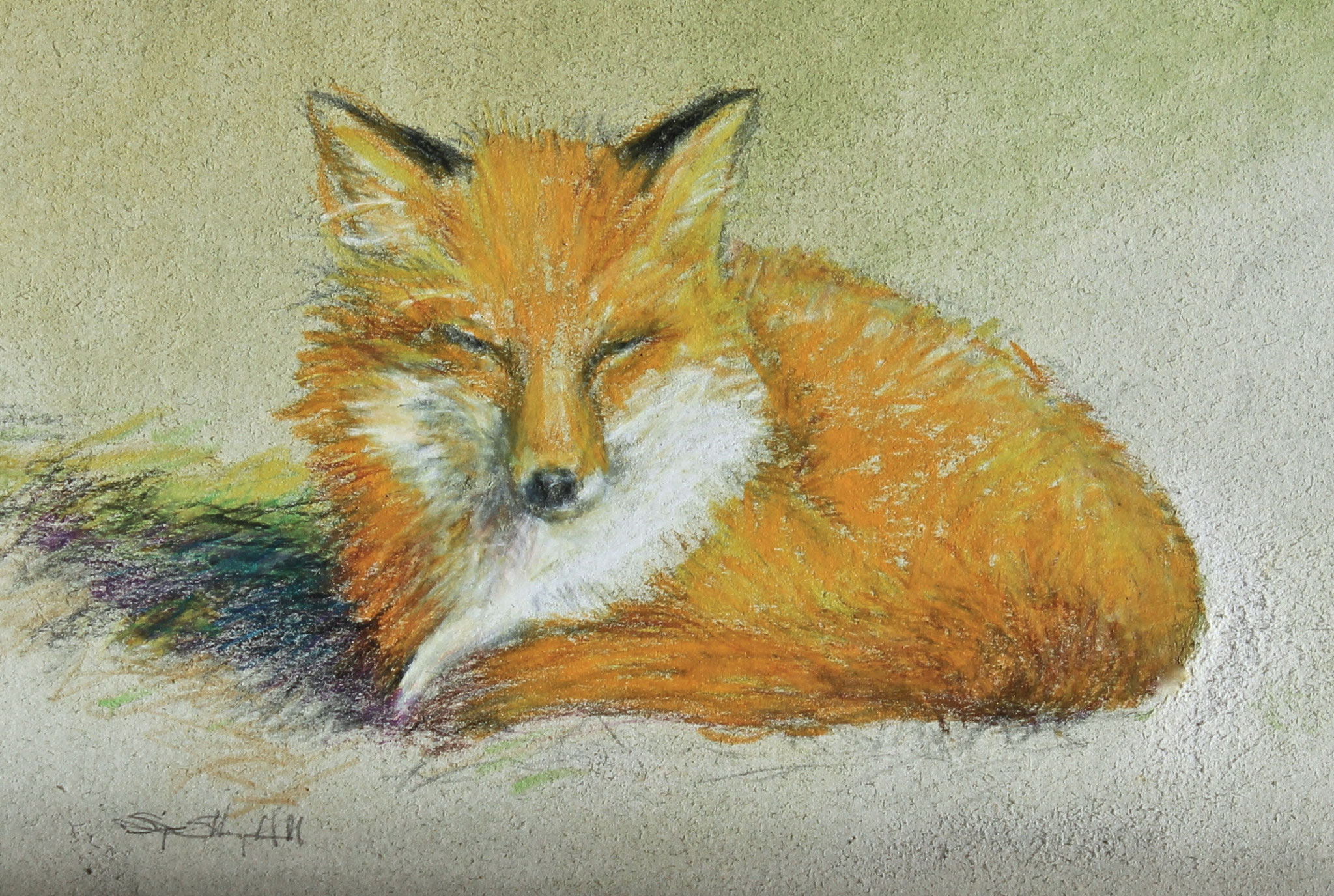 "Sleepy Fox- mixed media- 7""x5"""