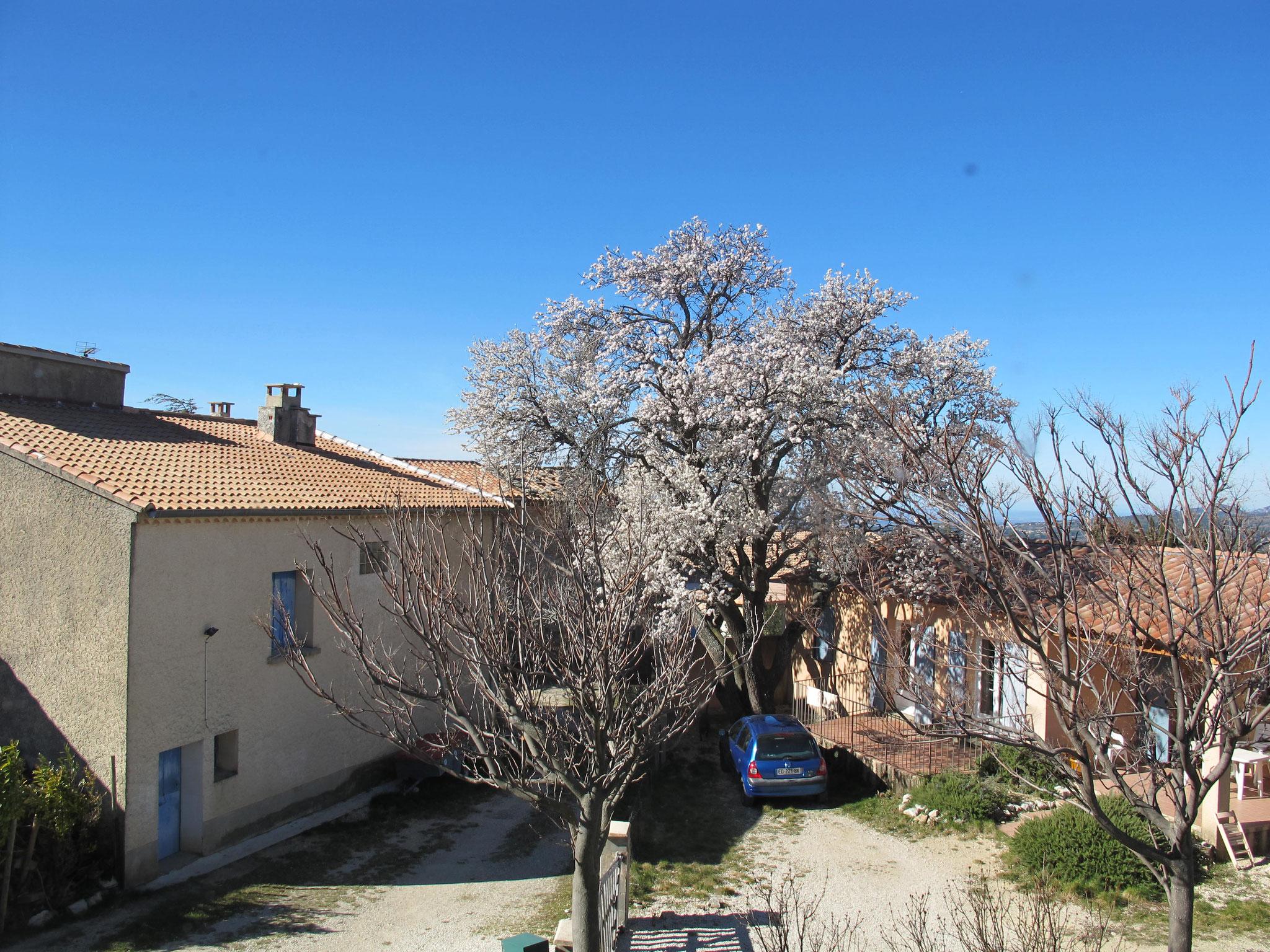 vue  Hôtel pension restaurant le Guintrand au pied du mont Ventoux Bedoin chambre