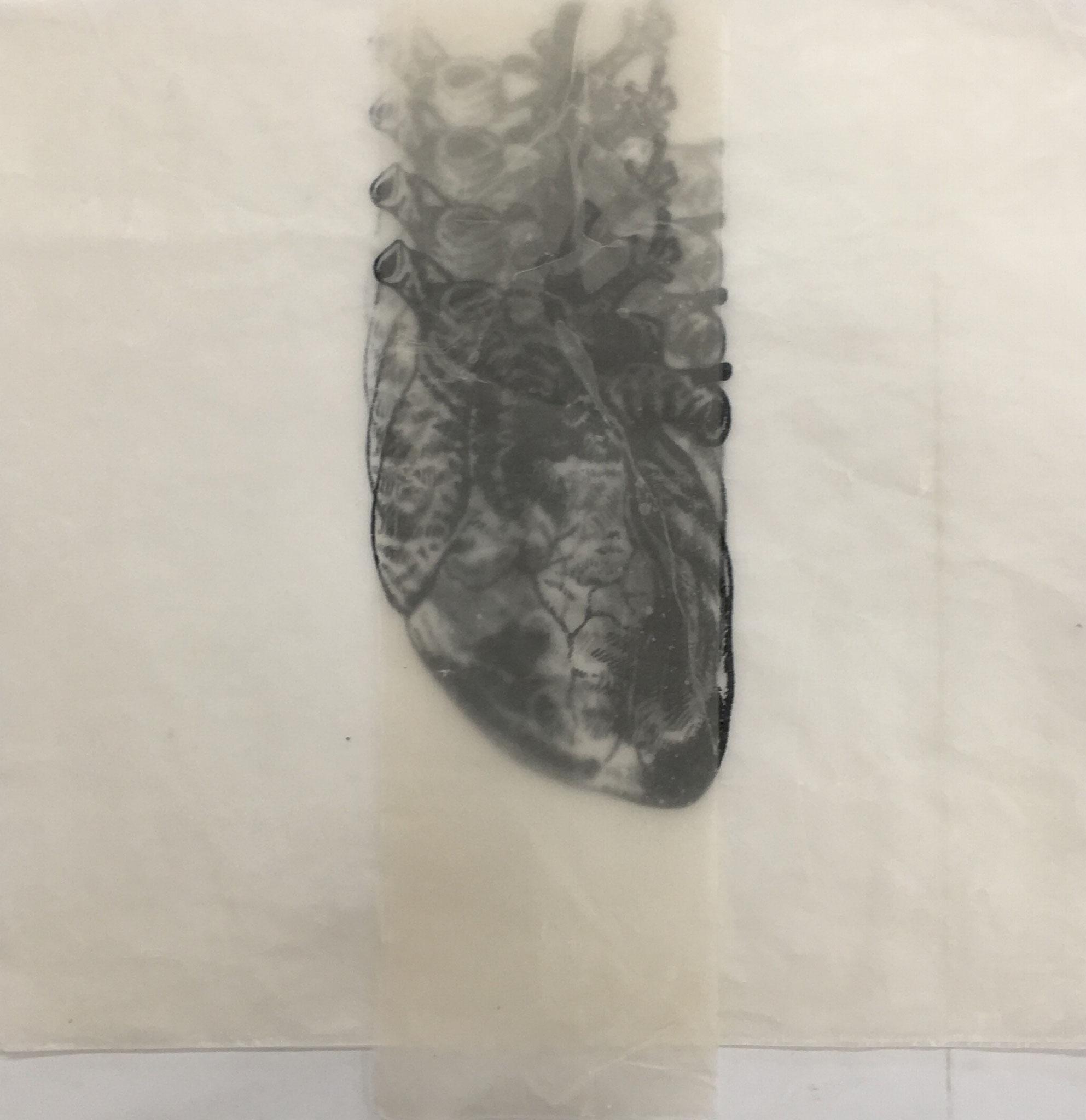 wachsherz | siebdrucke auf papier und wachs | 35x38cm | 2017