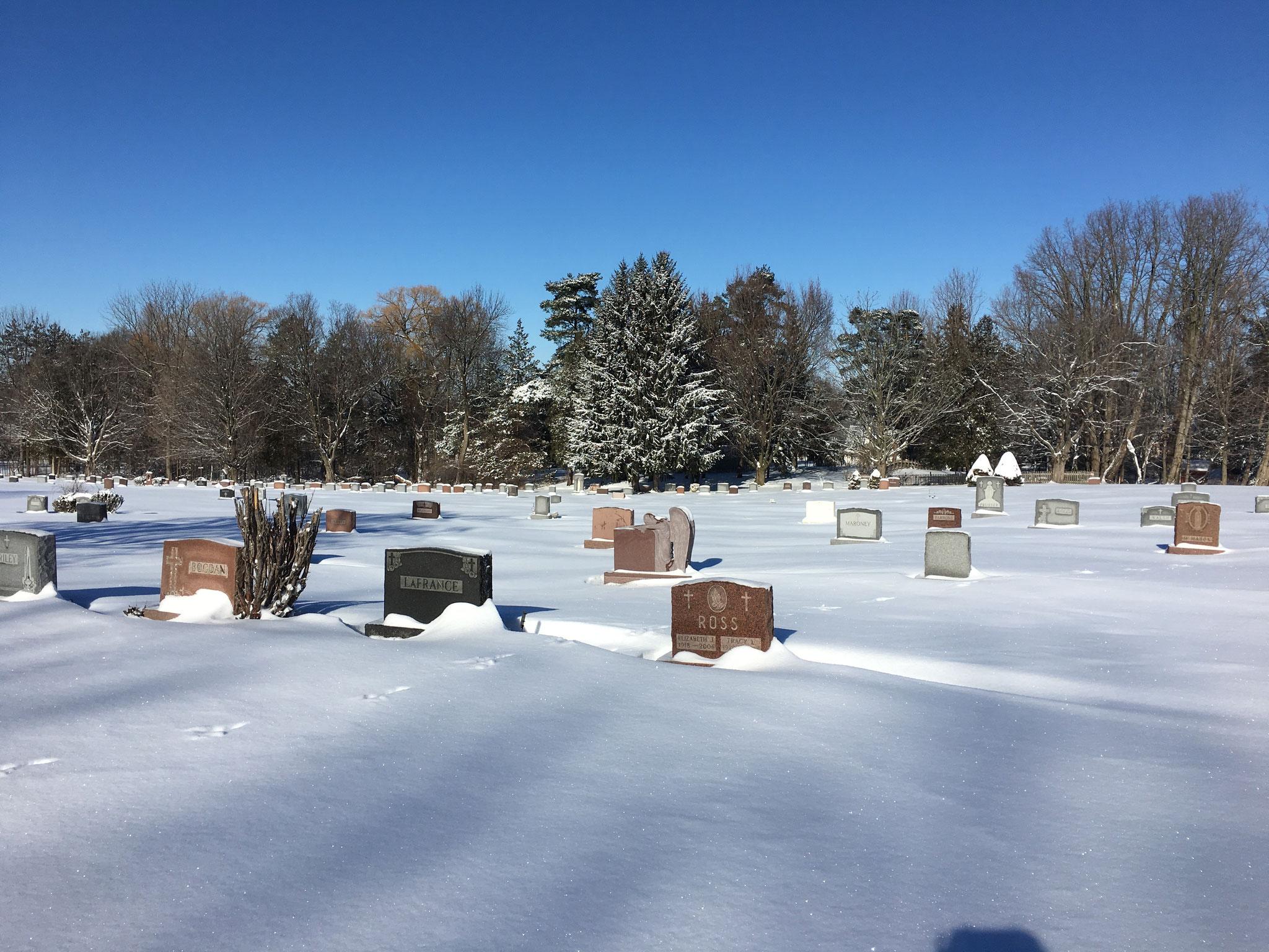 St. Mary's Cemetery, 2018 Bogden Family Grave