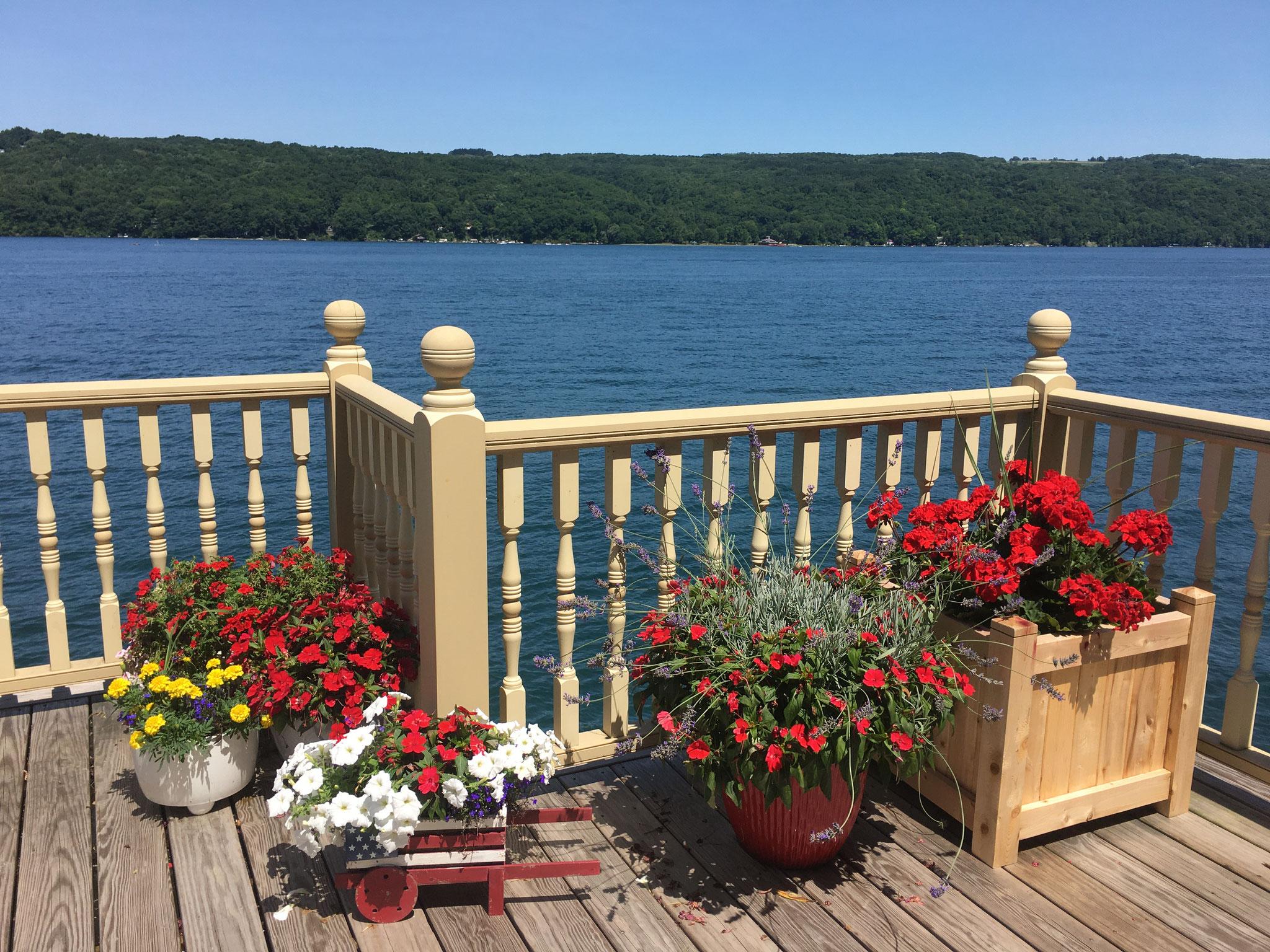 Beautiful flowers at the boathouse, Skaneateles Lake, 8-2020