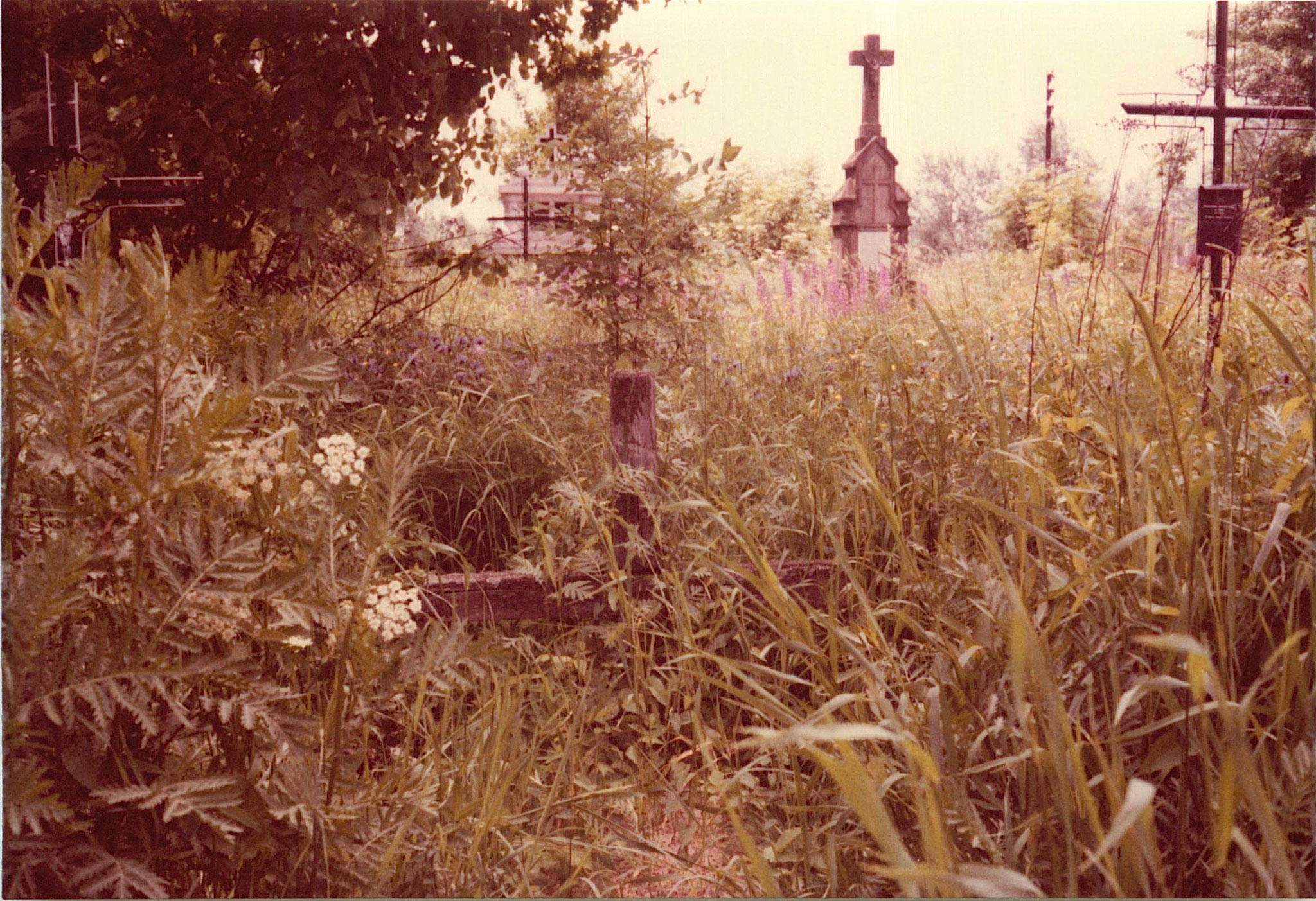 Paul Bogden's parents' grave, cemetery near Mielec, Poland, 1978