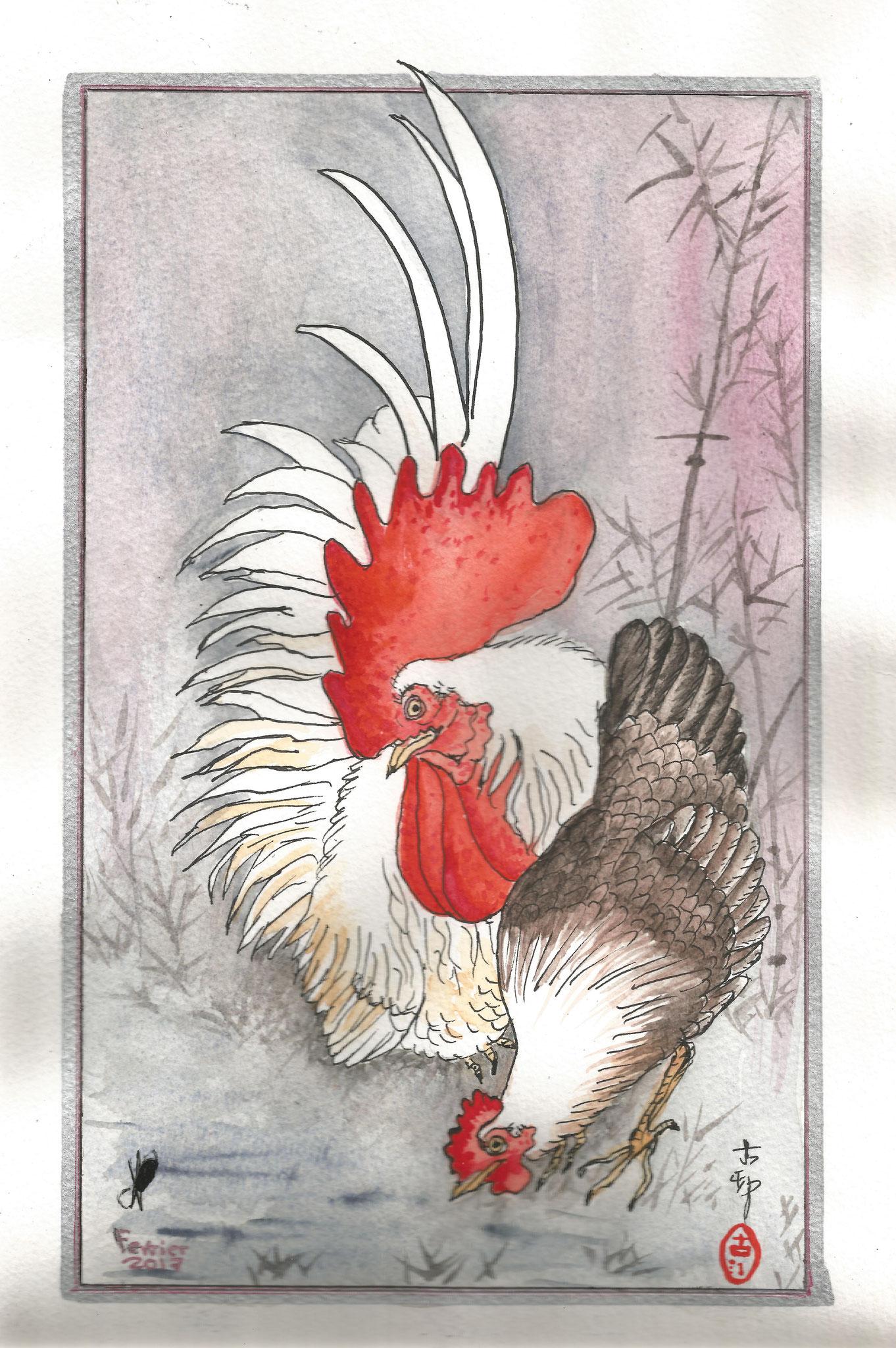 Coq japonais janv 2017
