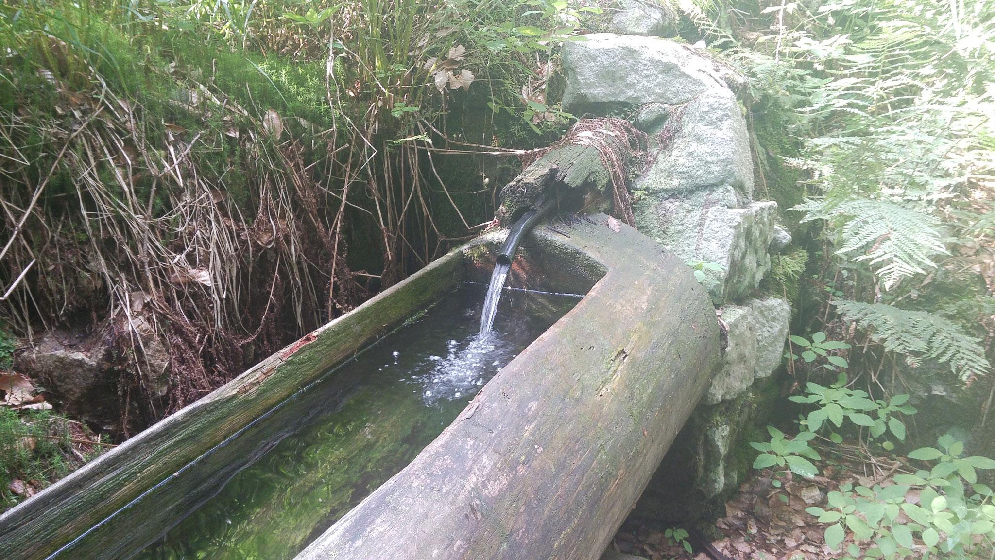 Gesundheitsbrunnen in MEHLMEISEL