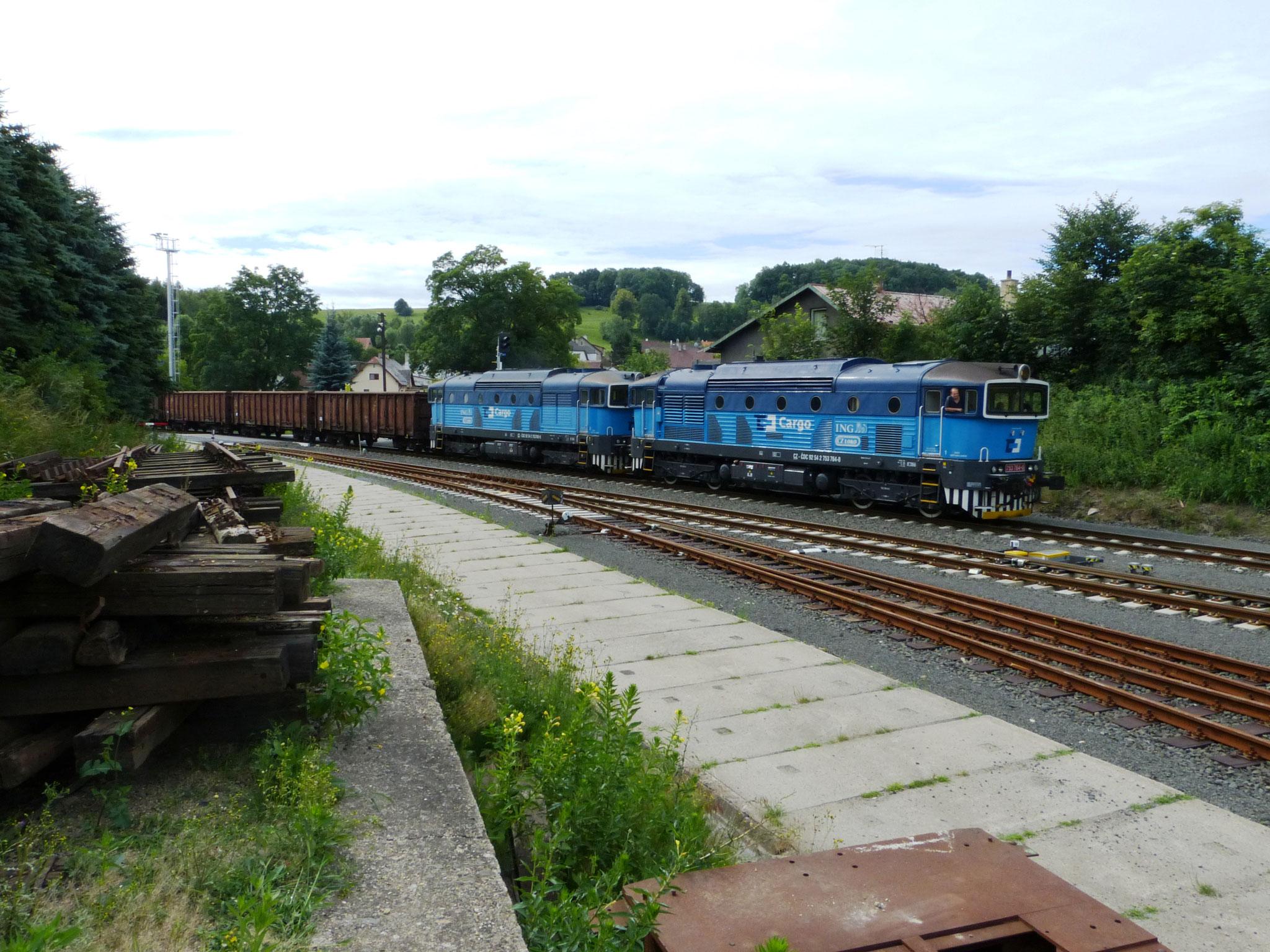 Einfahrt eines Güterzuges aus Zawidow (PL)