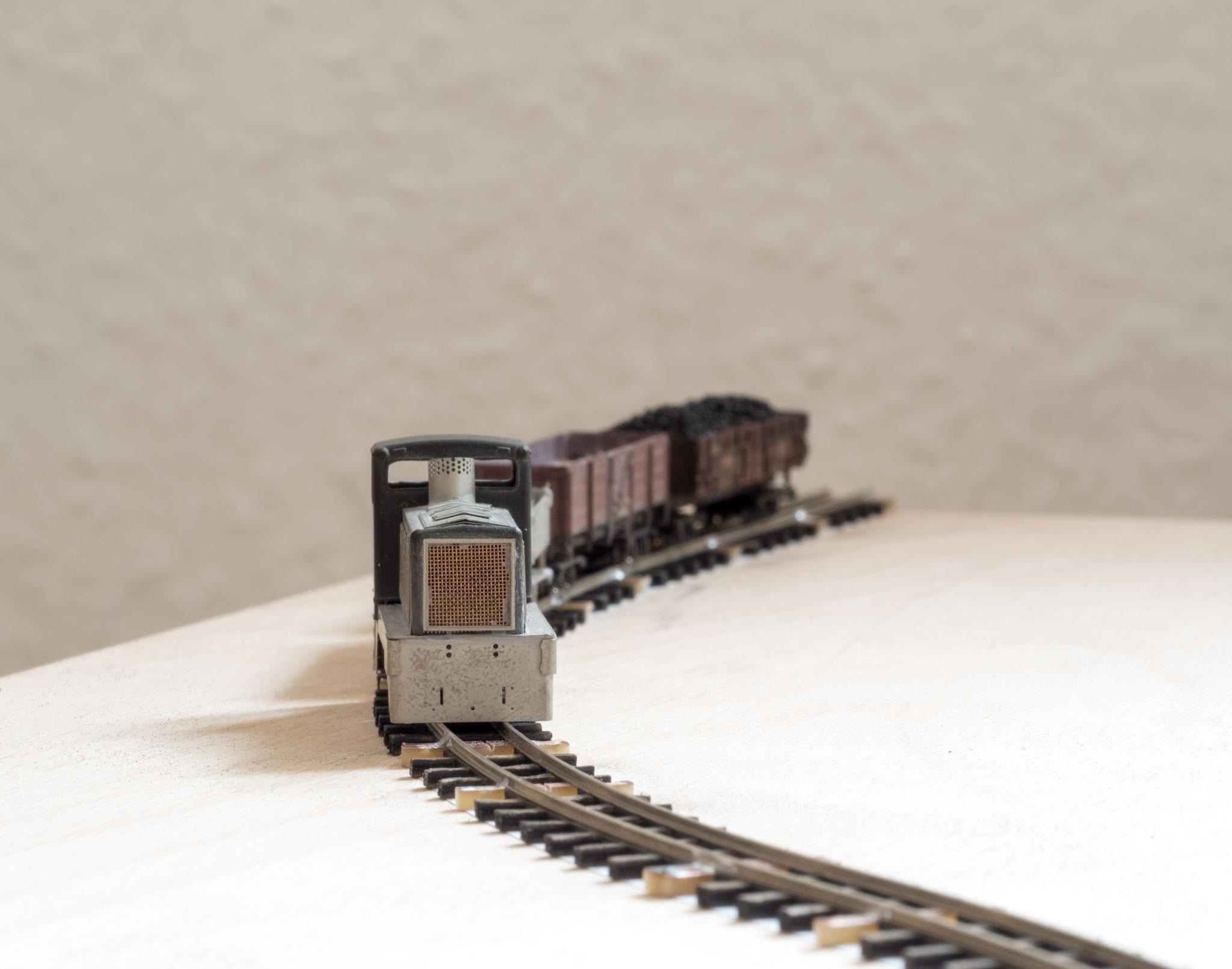 TTf-Zug auf Selbstbaugleis
