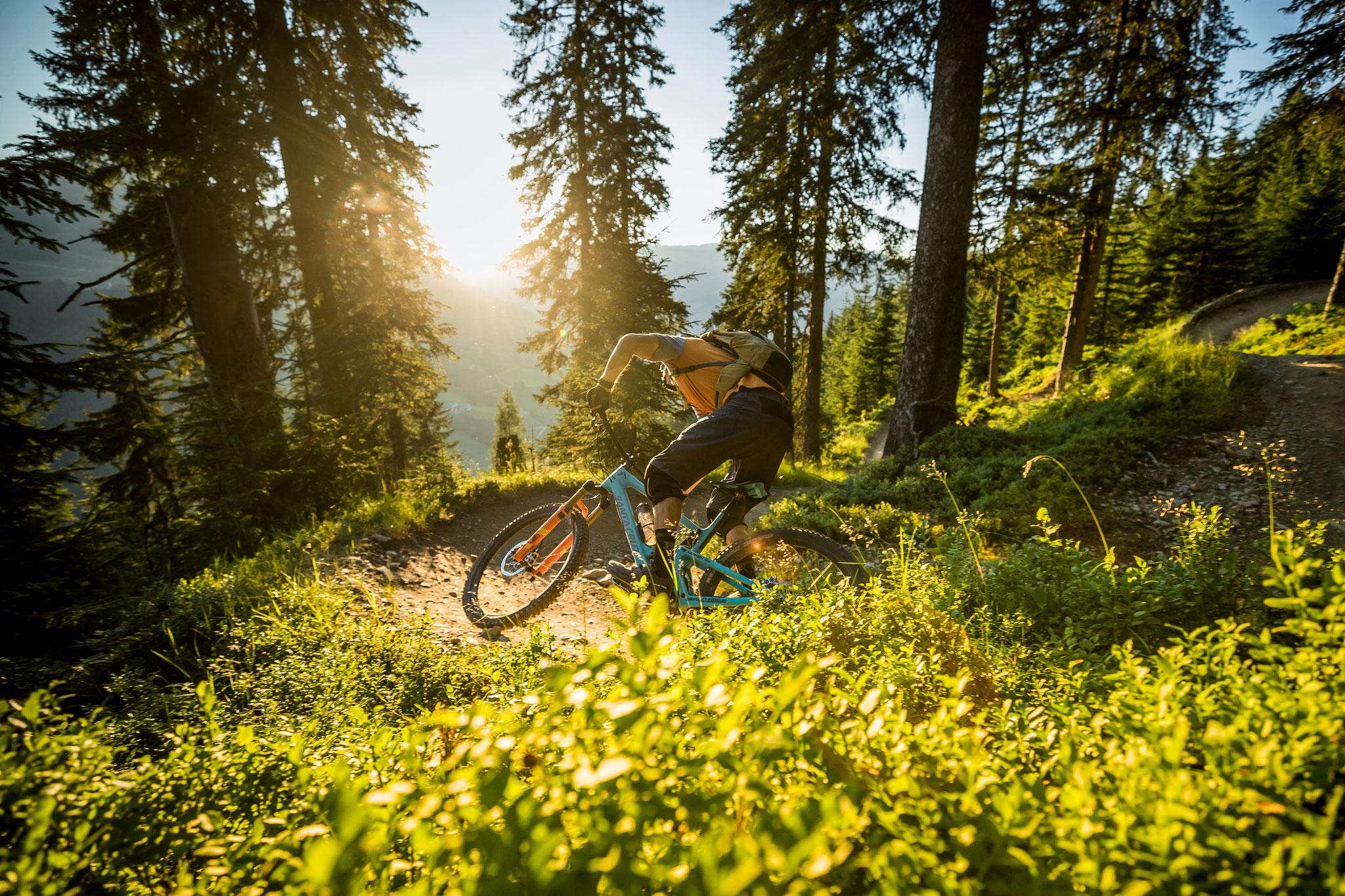 Ultimative Bikestrecken