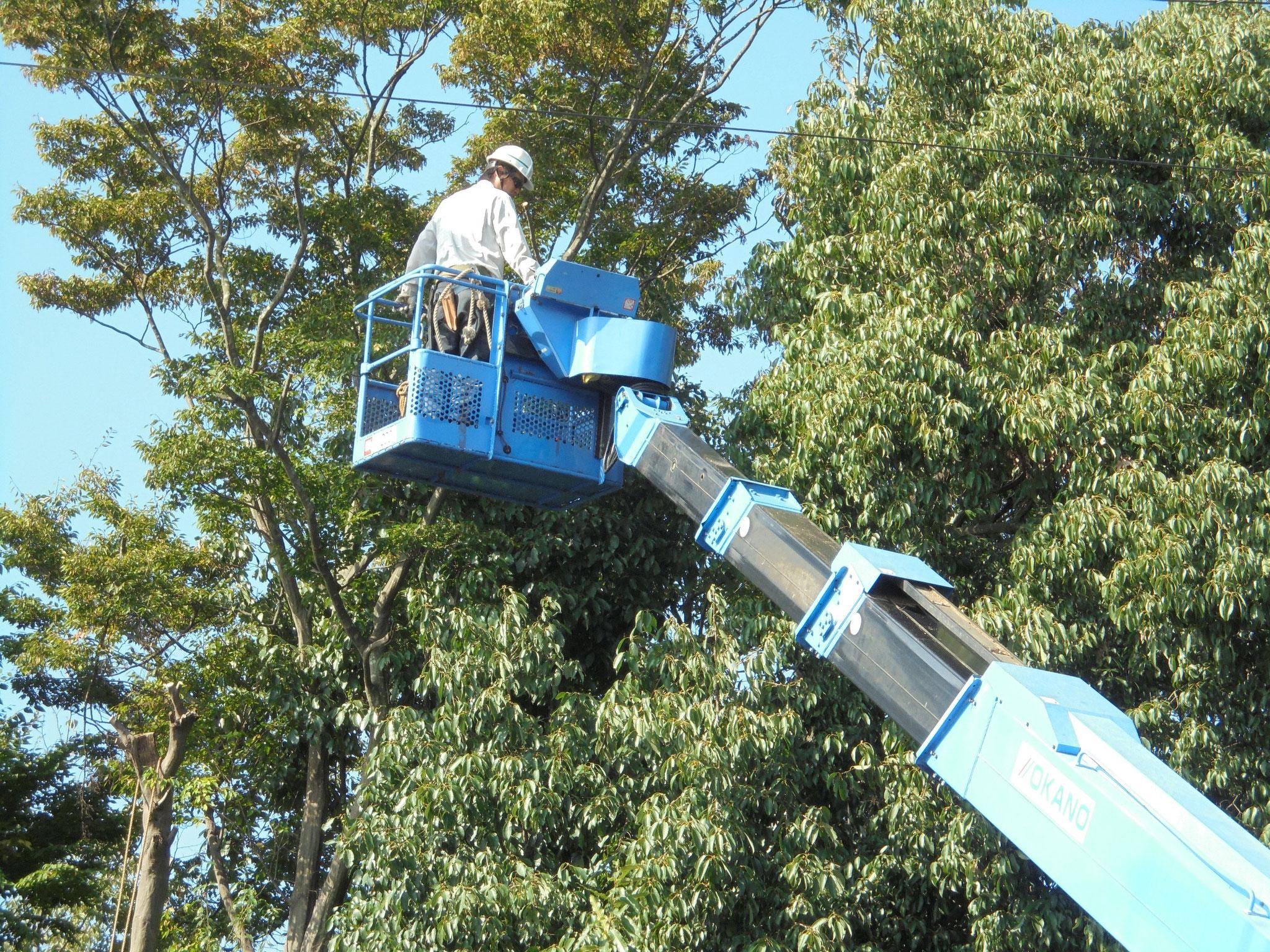 重機を使えば安全かつ迅速に対応できます。