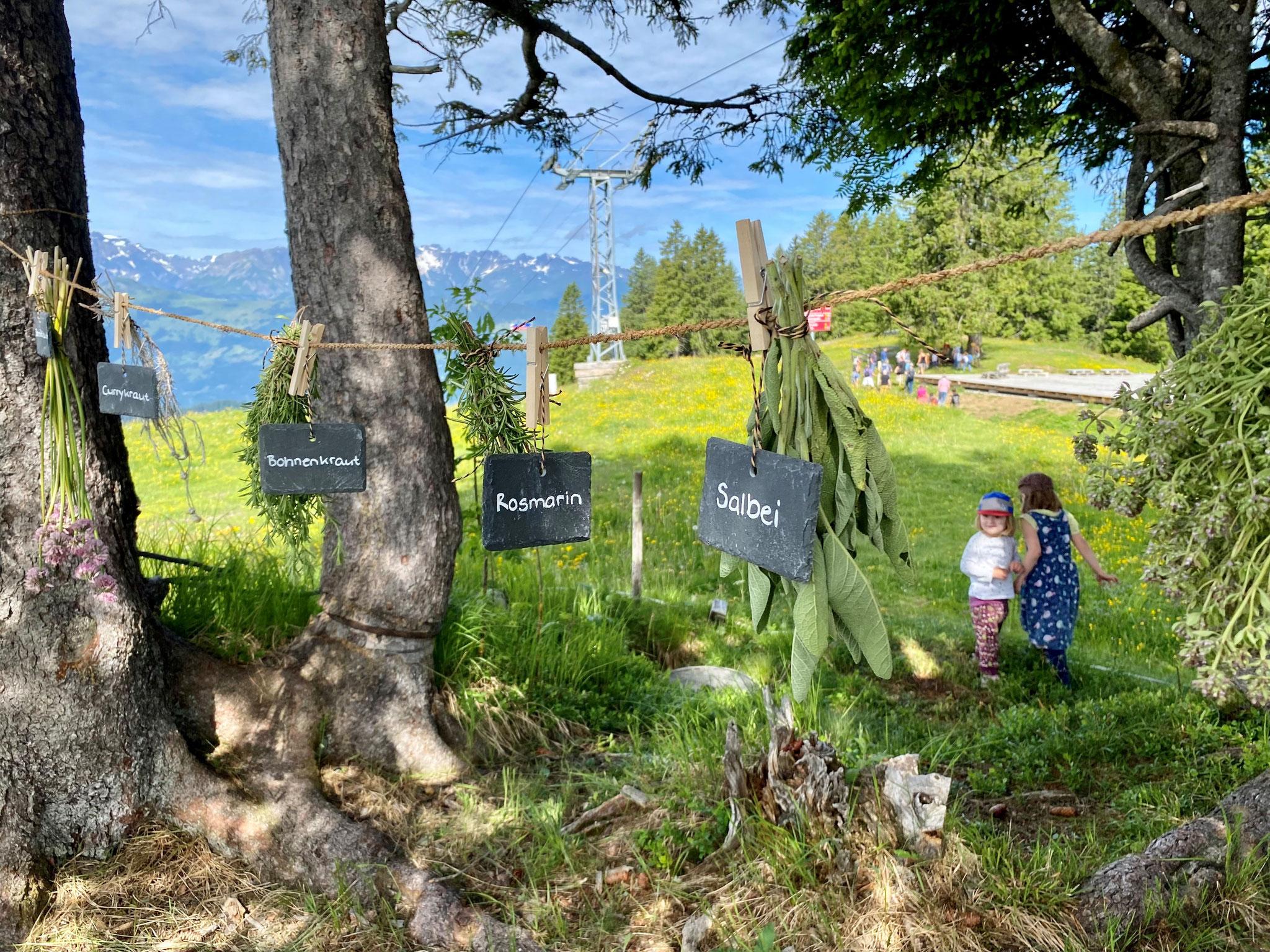 ©by Prättigau Tourismus