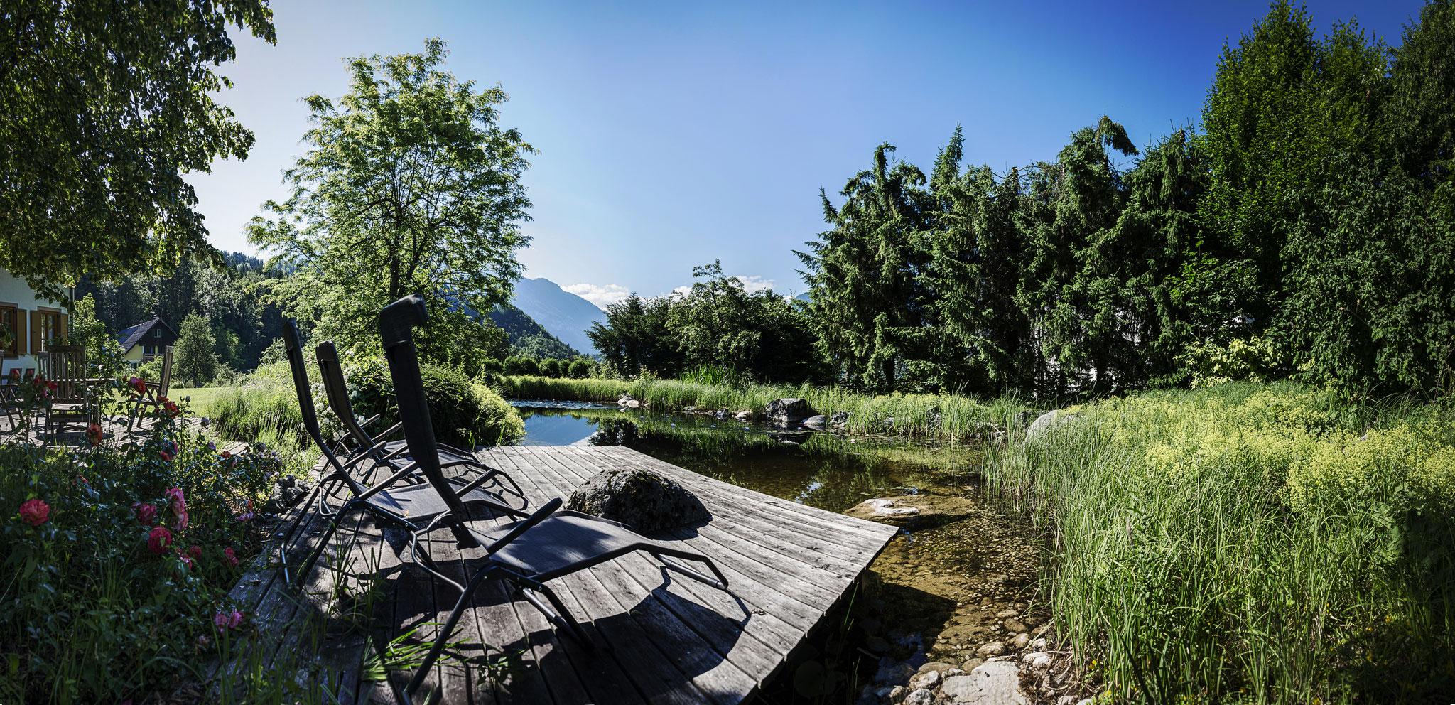 Schwimmteich Villa Anna Bad Goisern