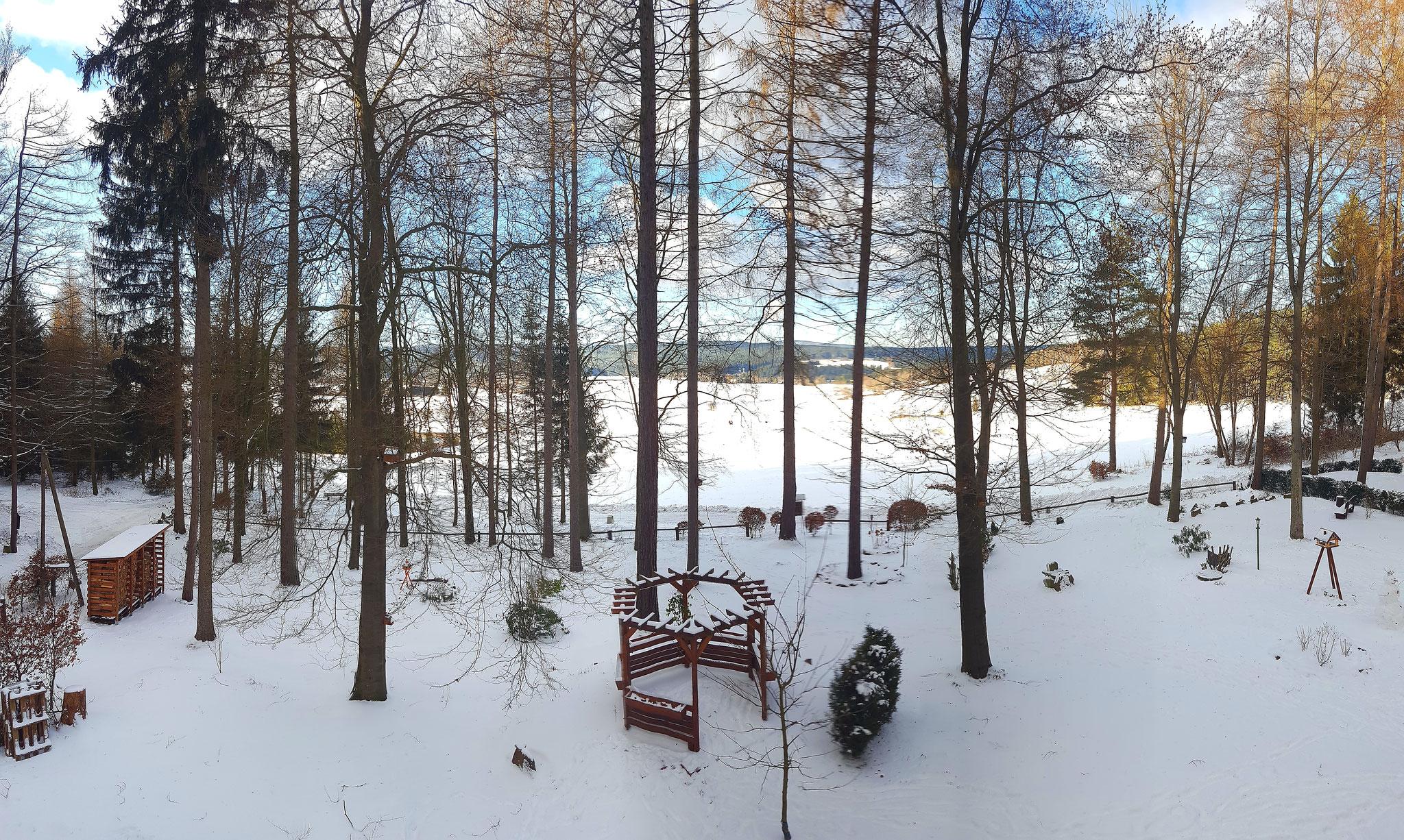 Waldgarten im Schnee