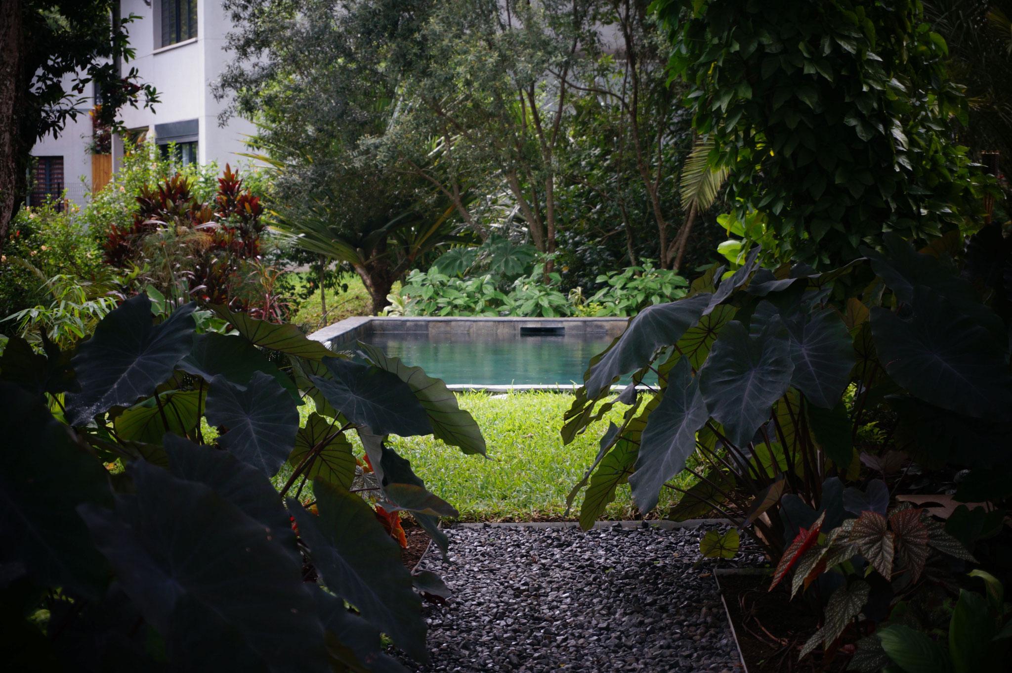 Allée de jardin © Rc-Paysage