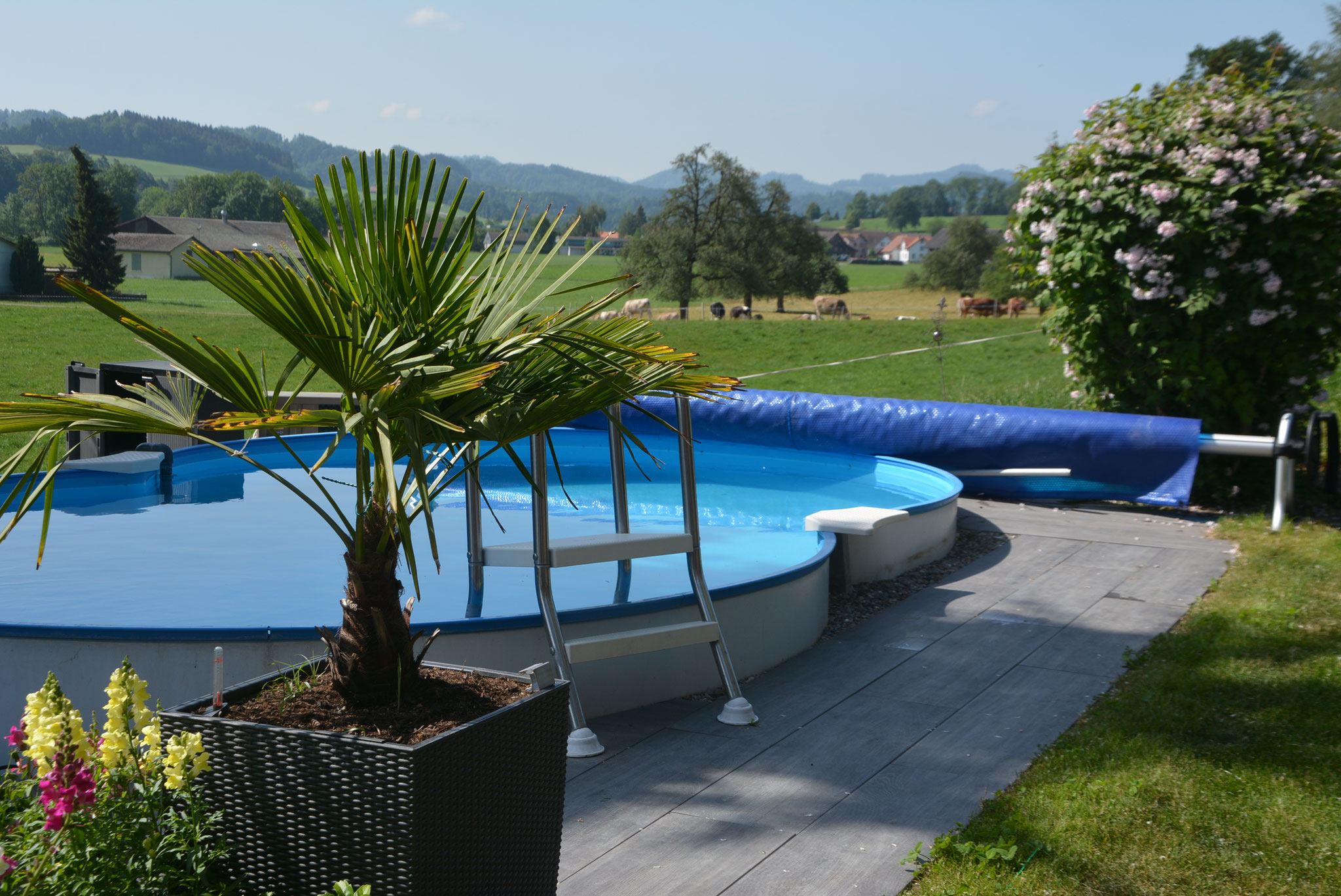 Geheizter Swimming-Pool (26 Grad), ab ca. Anfang Mai bis ca. Ende August verfügbar