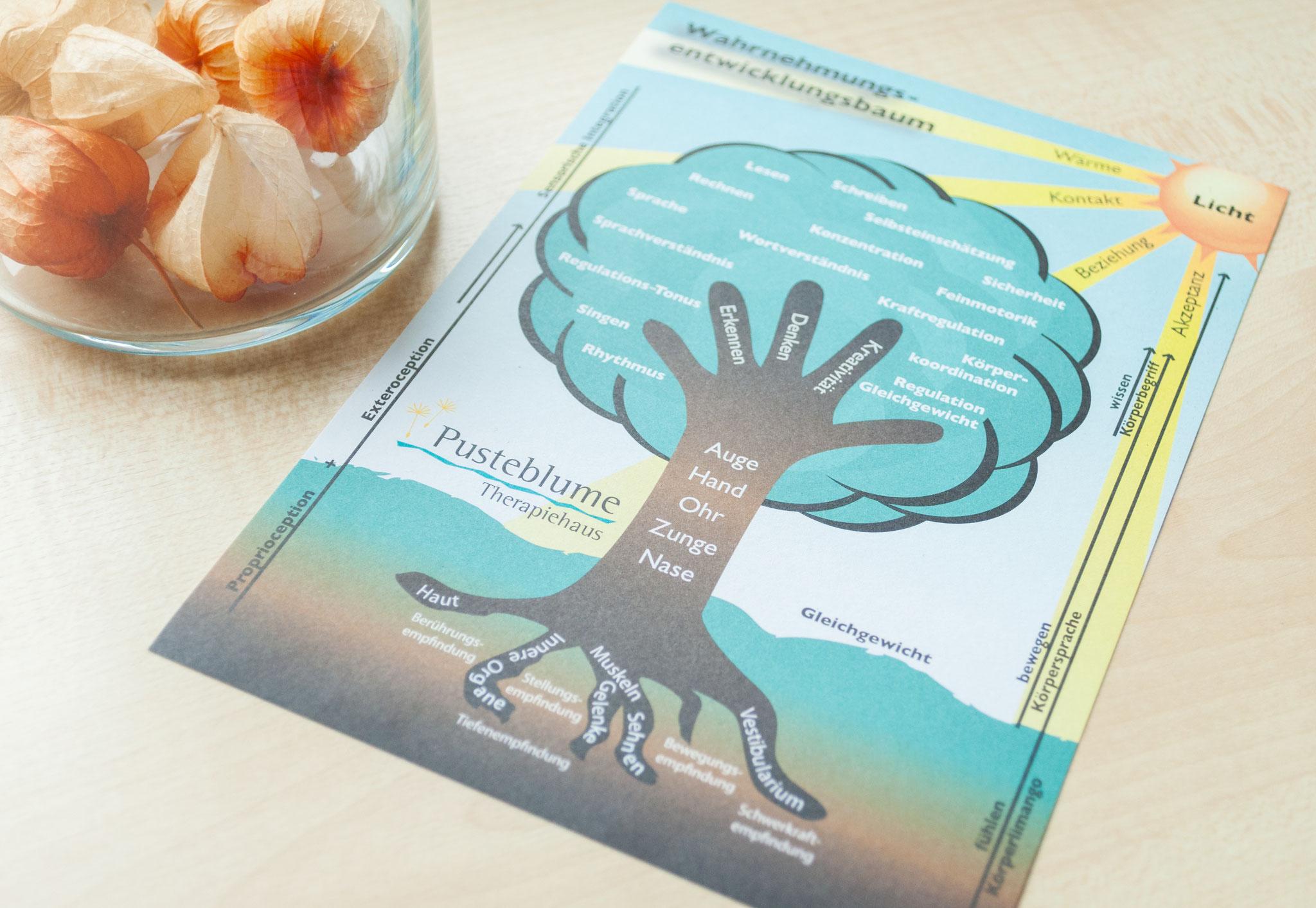 Wahrnehmungs-Entwicklungsbaum