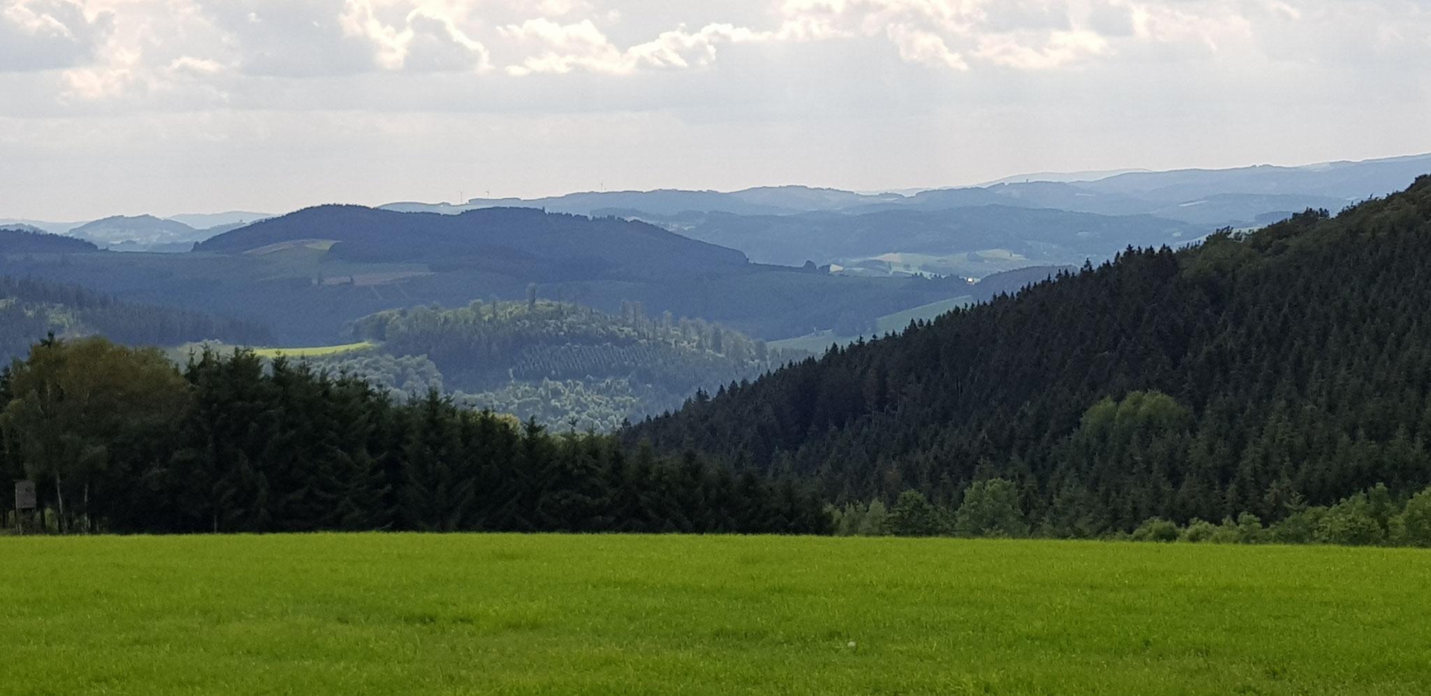 Winni Sperlich - Landschaft bei Mönekind - August 2020