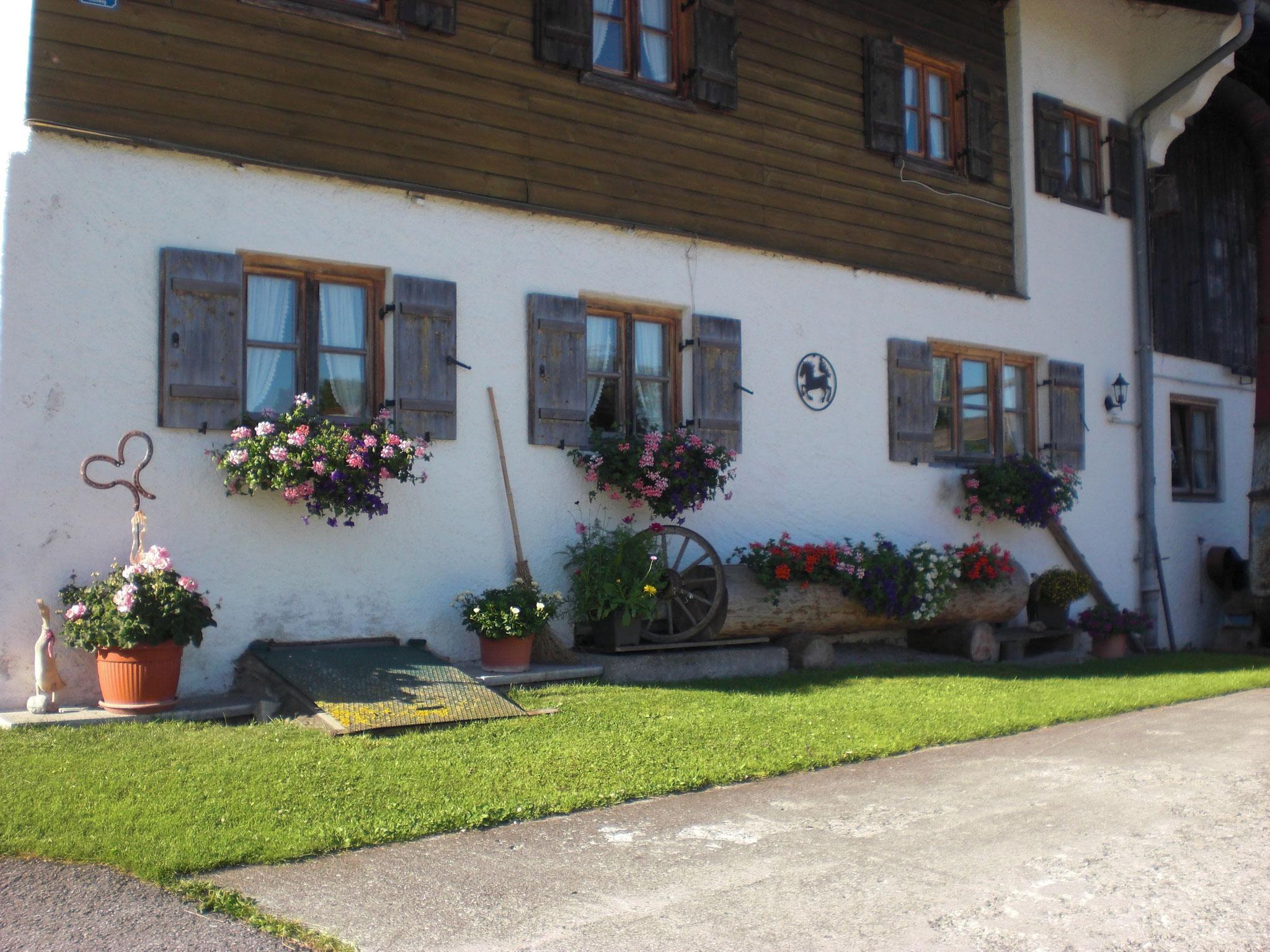 Greinhof Birkenstein - Nordseite