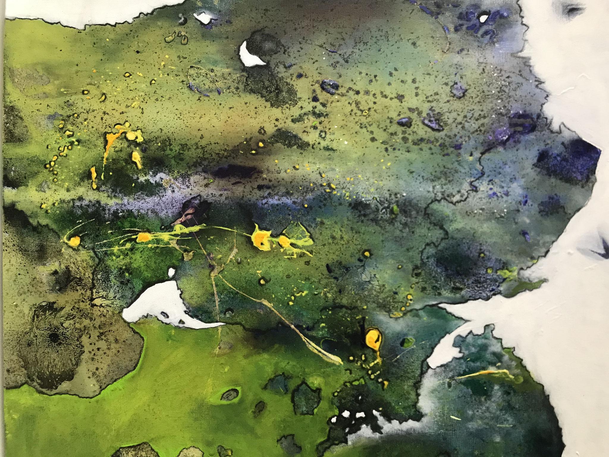 Nordmoos, Acryl auf Leinwand, 40 x 50 cm