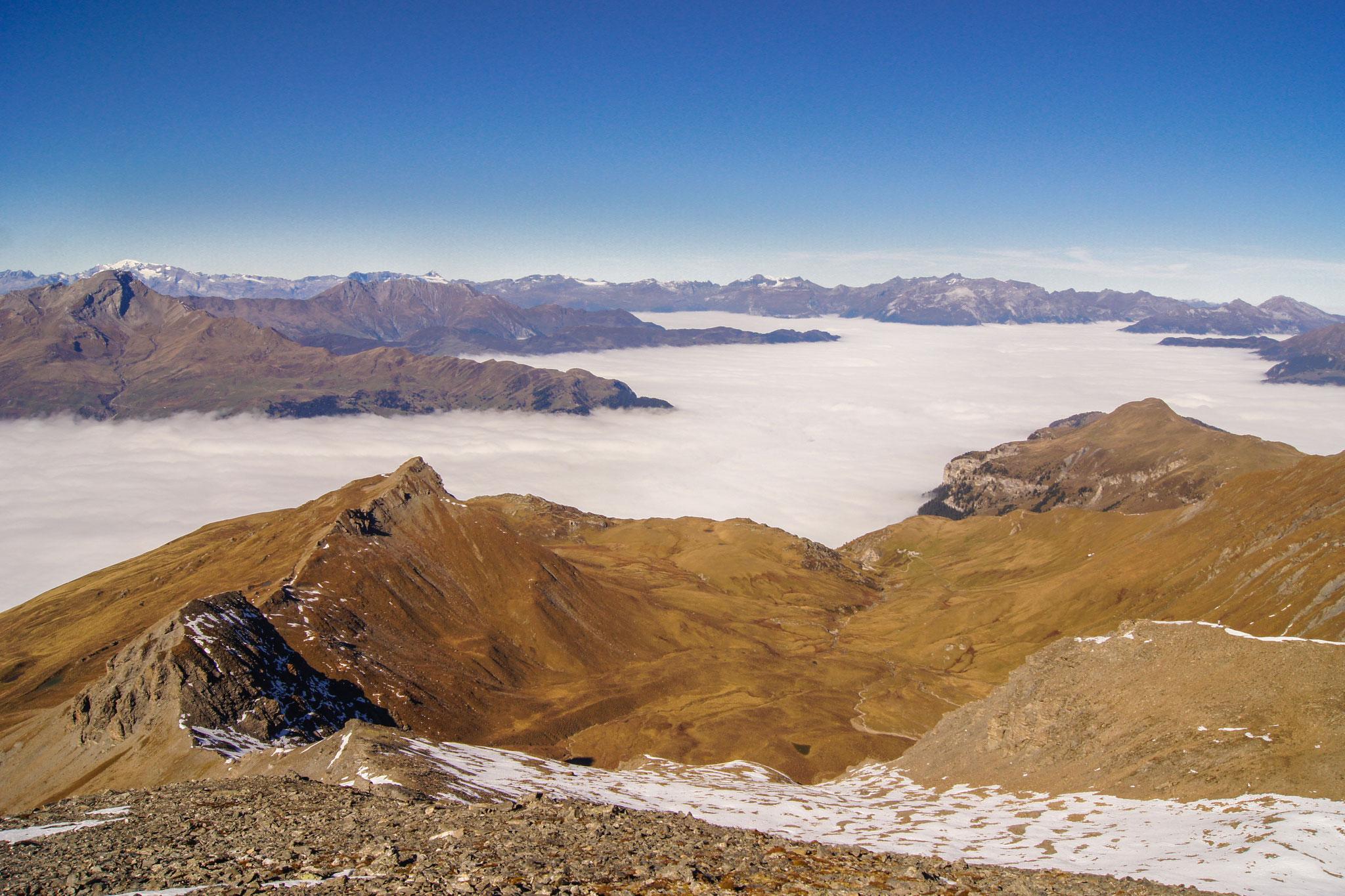 Blick auf Alp Taspegn vom Piz Curver (Foto: Bruno Riedhauser)
