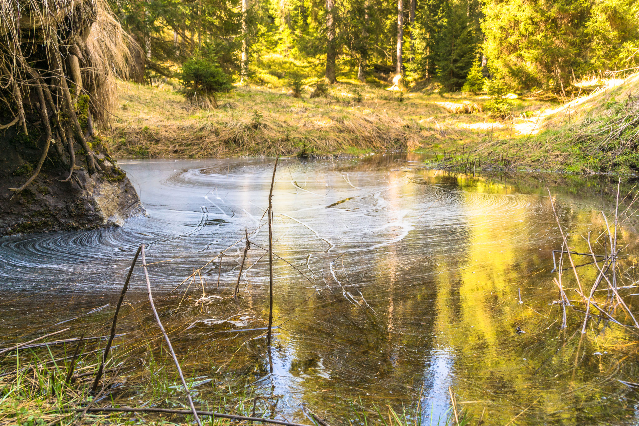 Kleiner See (Foto: Bruno Riedhauser)