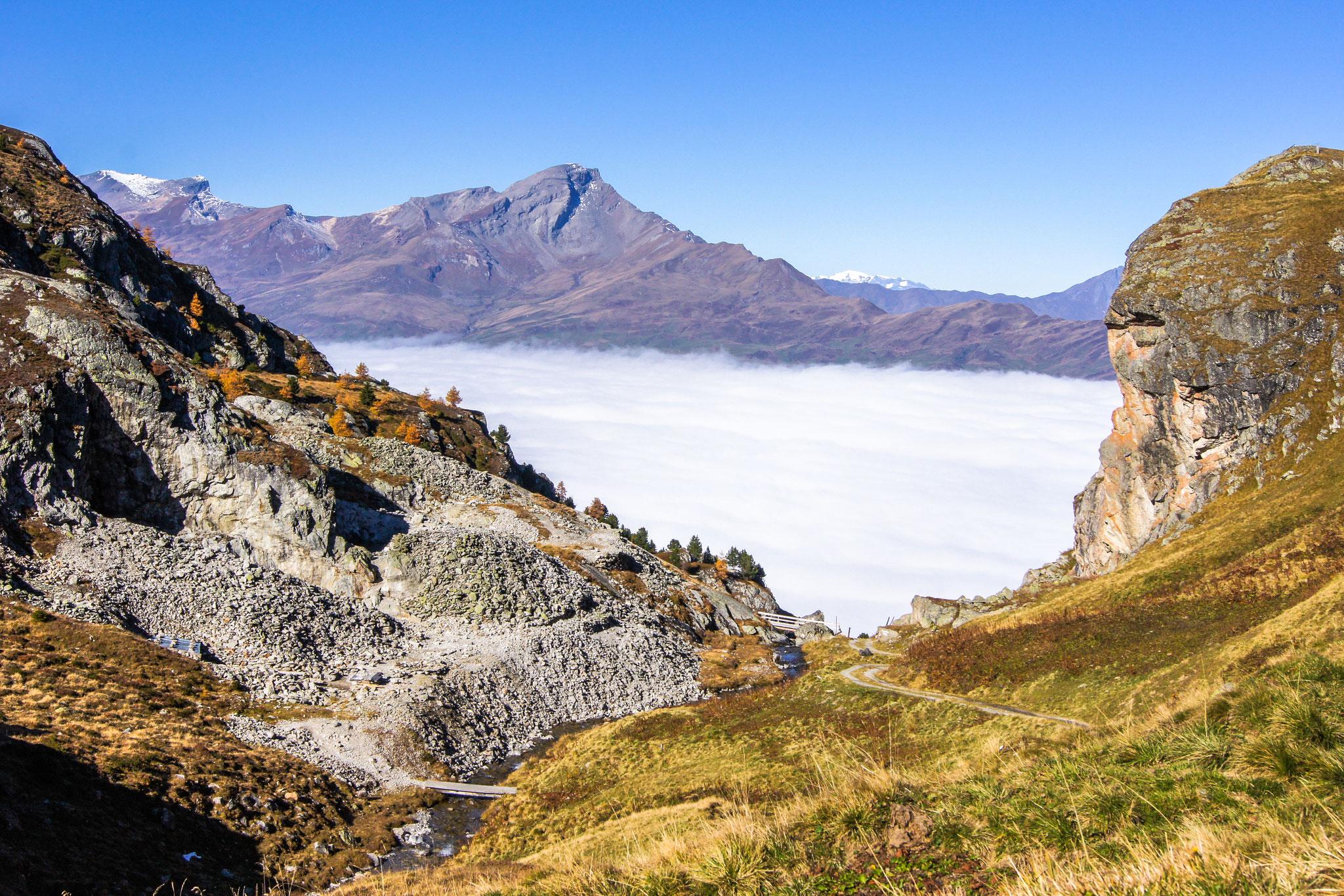 Abbaugebiet Alp Taspegn mit Blick auf Piz Beverin (Foto: Bruno Riedhauser)