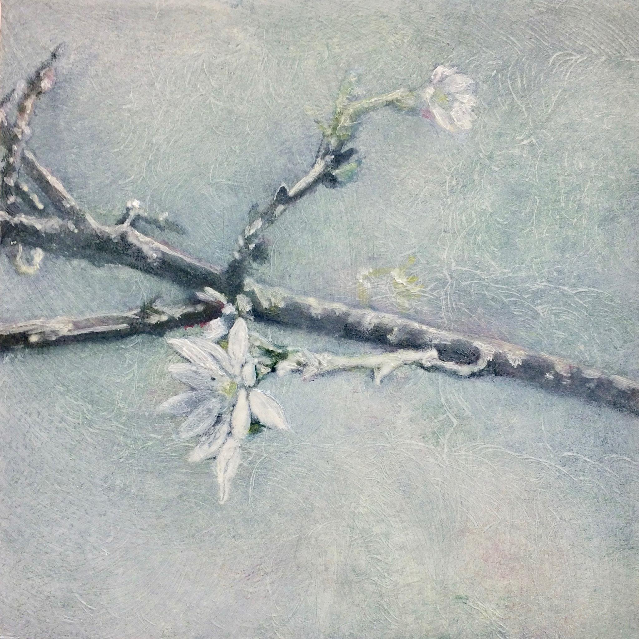 十月桜図  180x180mm