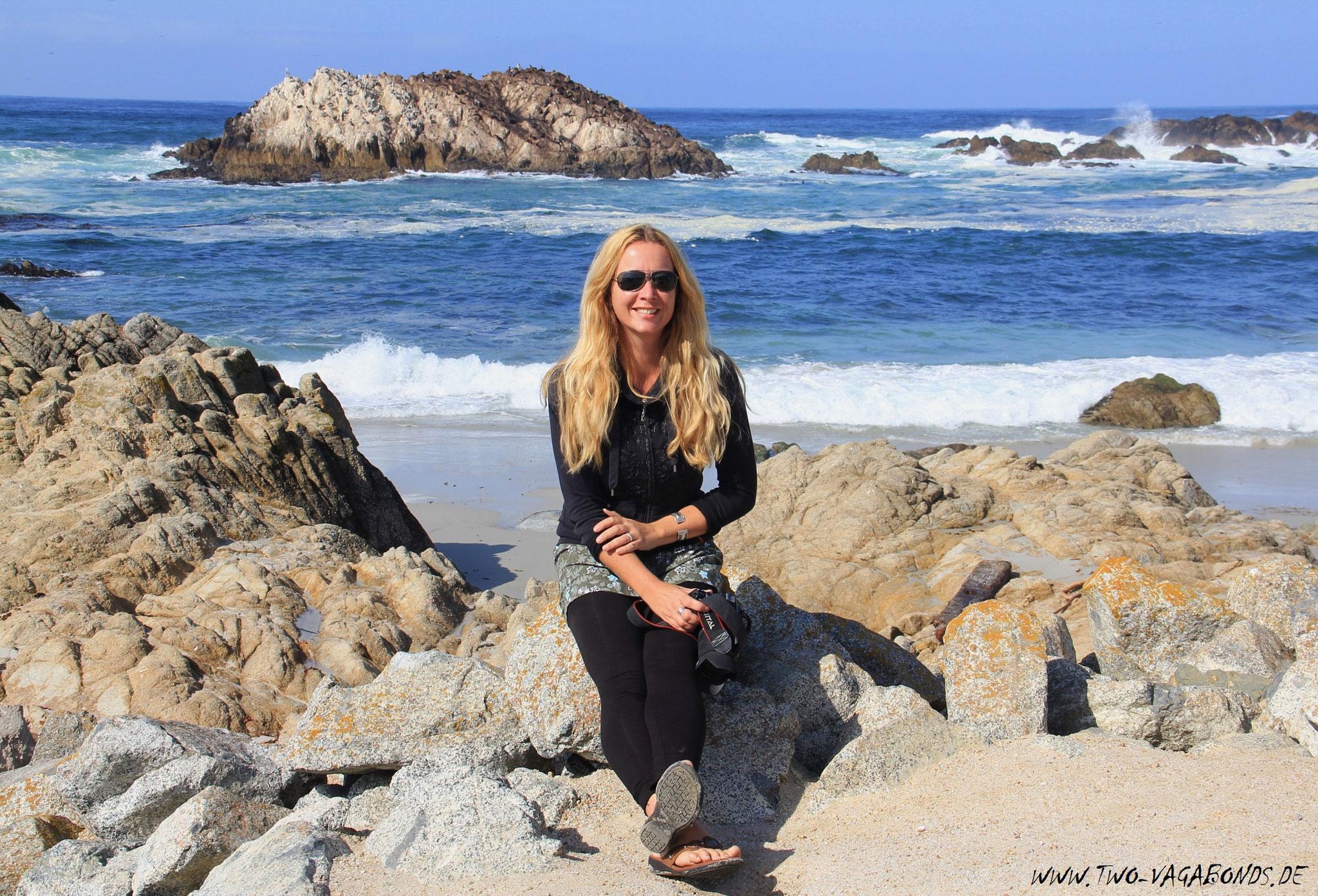 USA 2011 - AN DER KÜSTE CALIFORNIENS