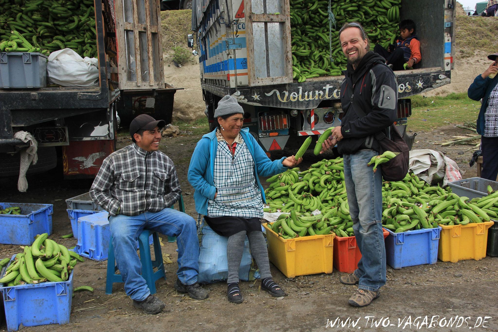 ECUADOR 2014 - VIEHMARKT IN LACATUNGA