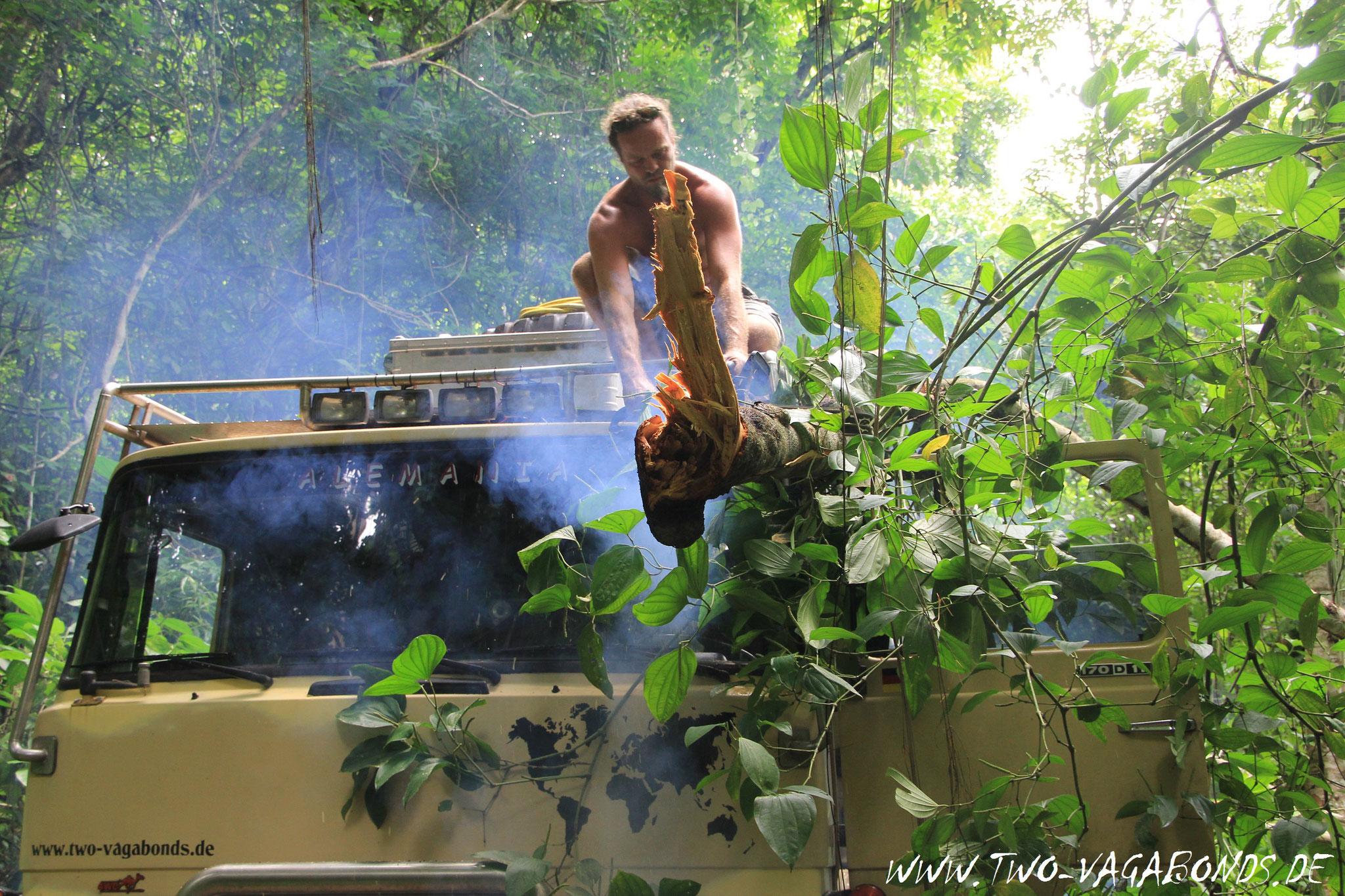 COSTA RICA 2013 - DSCHUNGEL ADEVENTURE