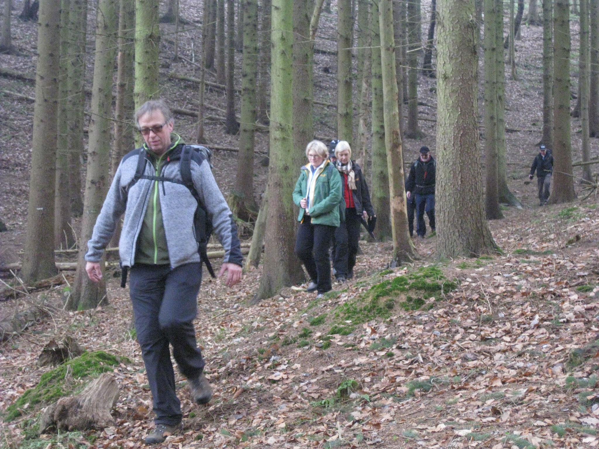 Dann aber lockte der Wald und Friedhelm stapfte fröhlich vorneweg