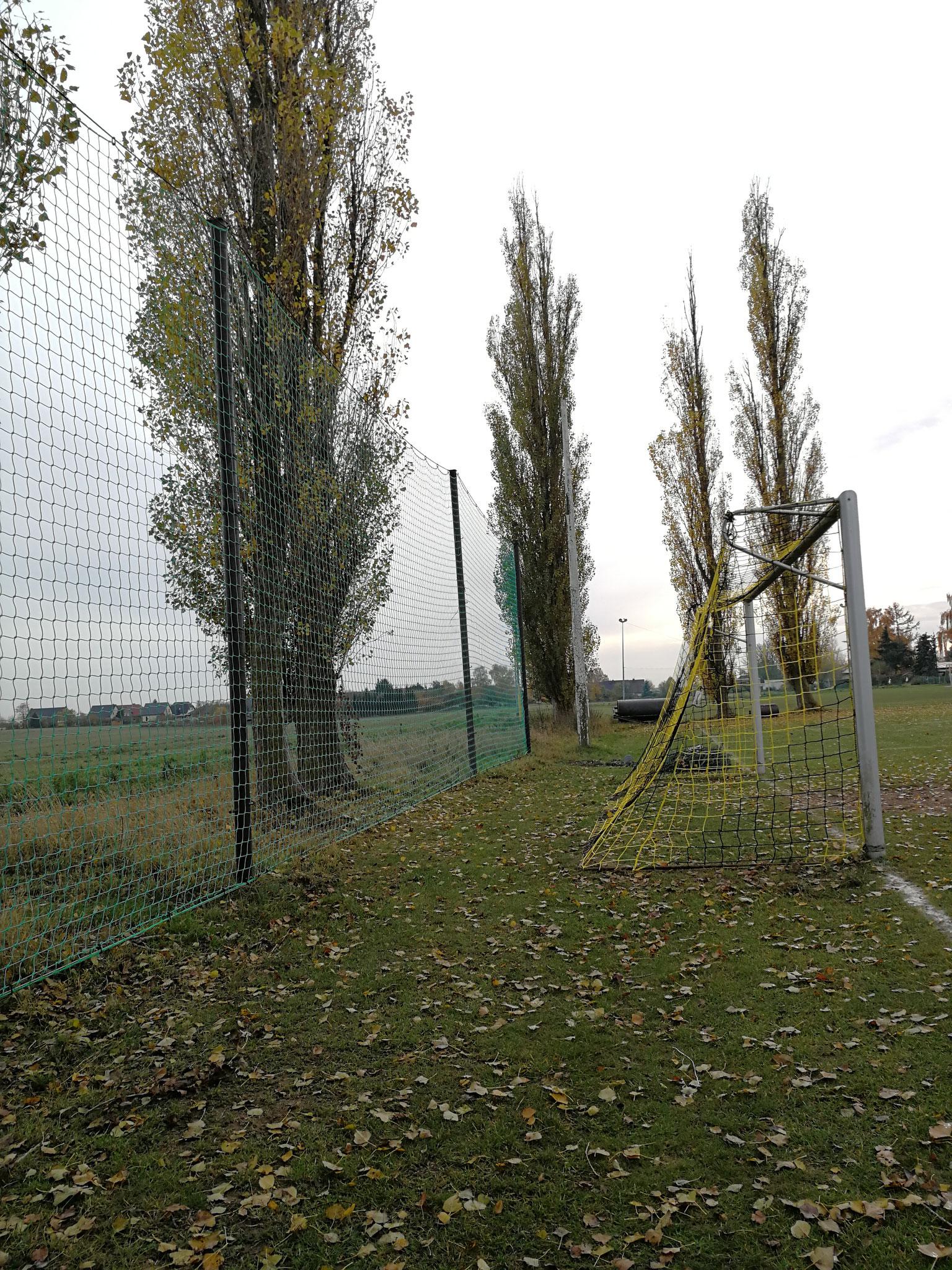 Ballfangnetz IFC Rostock