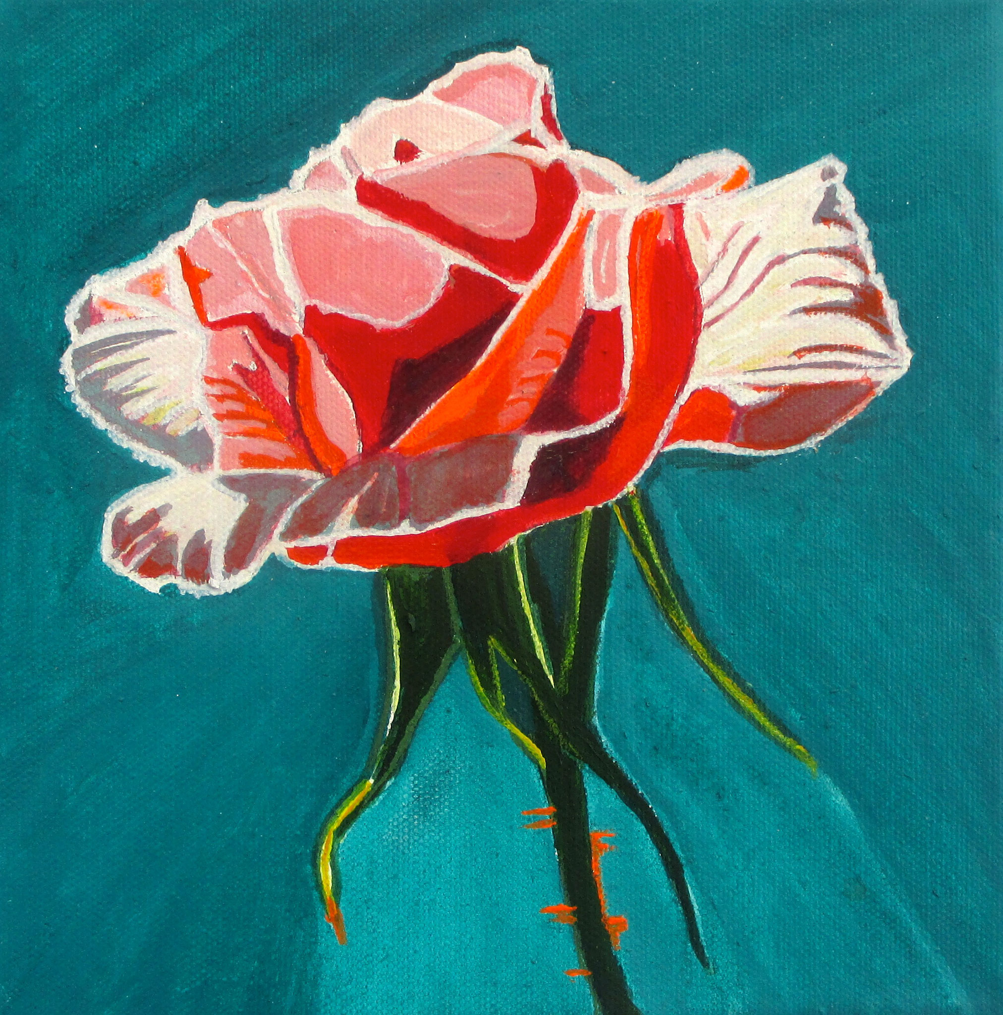 Venus Rose, acrylic on canvas, 8 x 8
