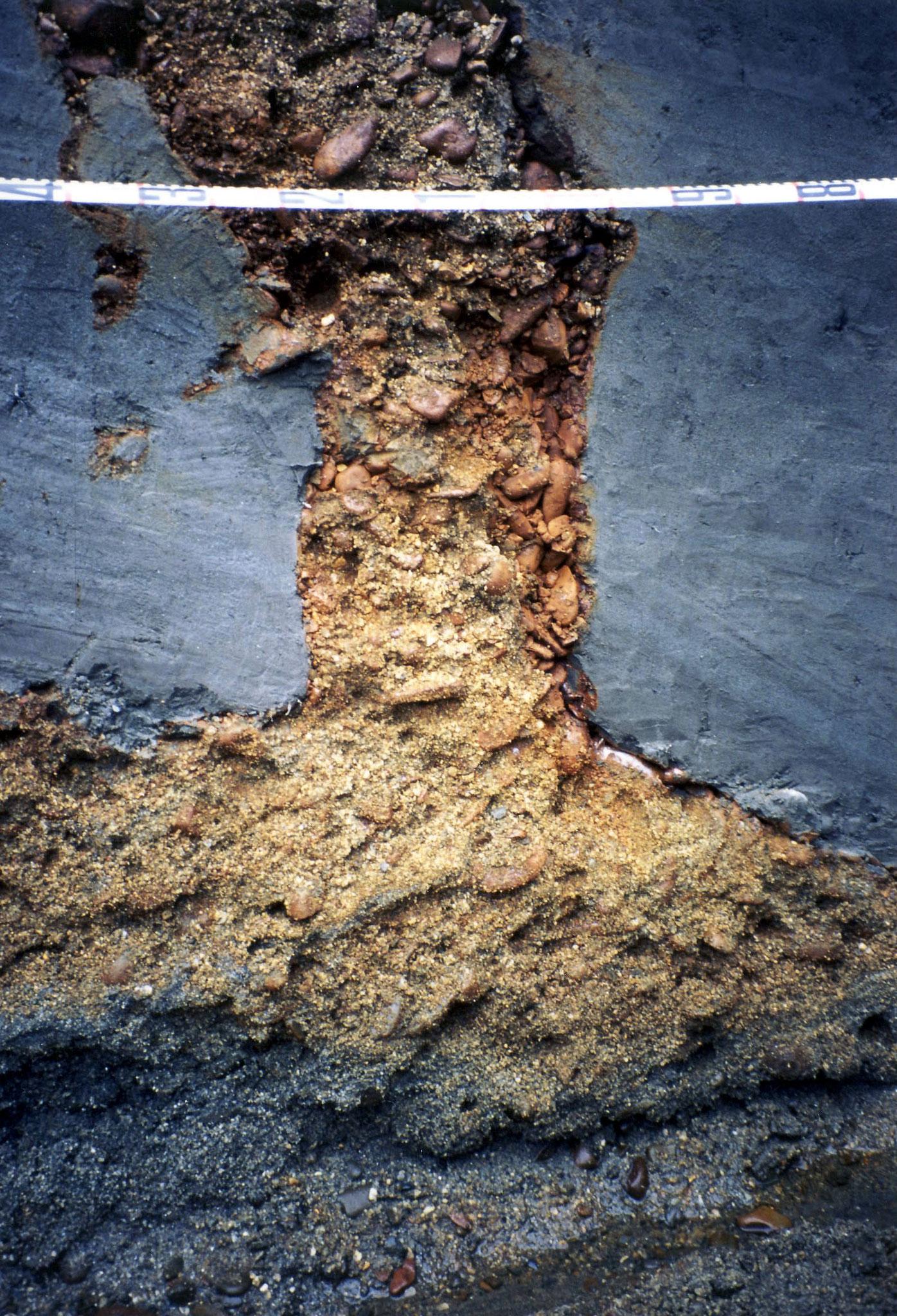 写真5 砂礫脈の基部(撮影:陶野)