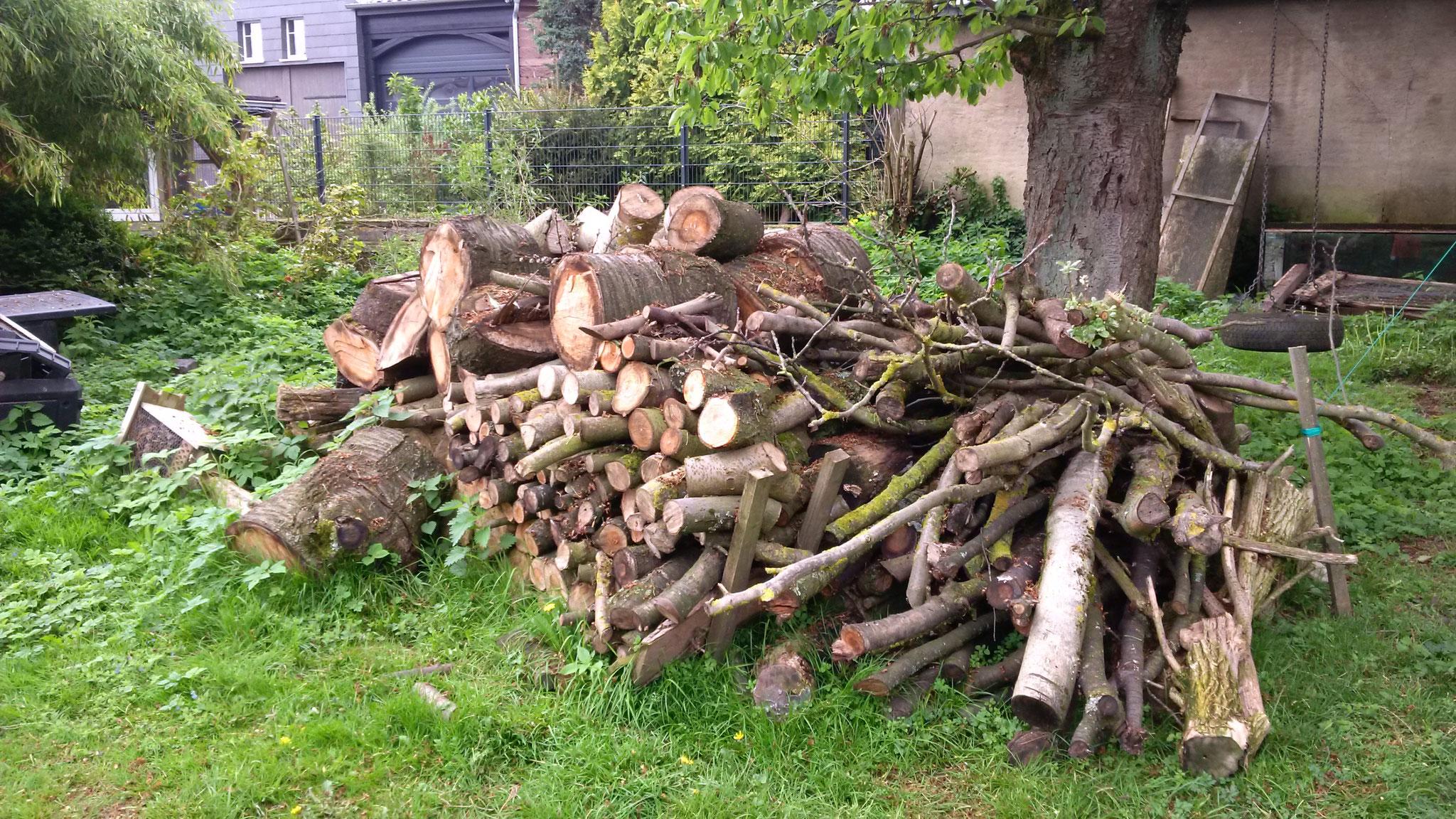 Brennholz für den winter.