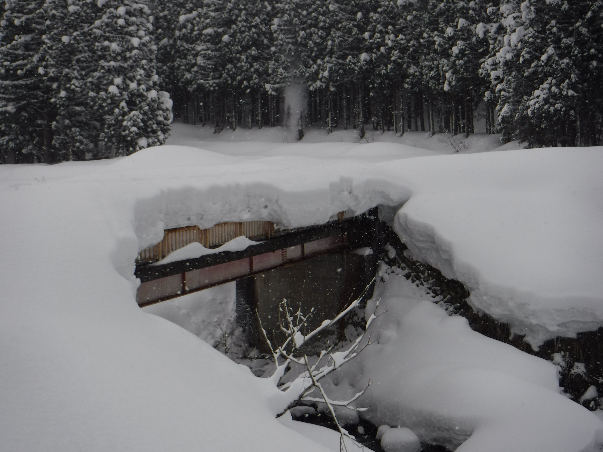 8:10 広堀橋上の積雪は2mほどか