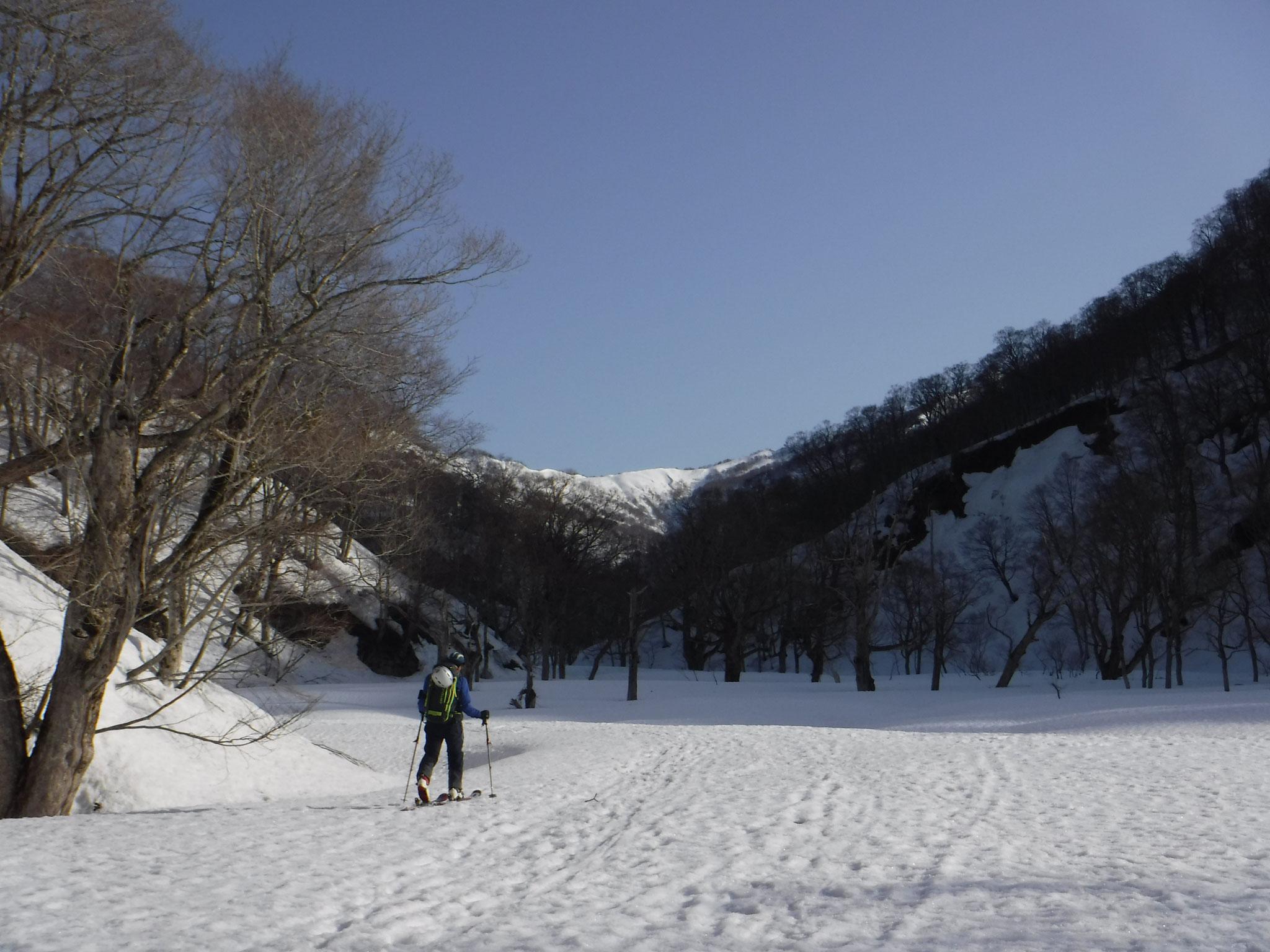 心安らぐ、大海川の雪原