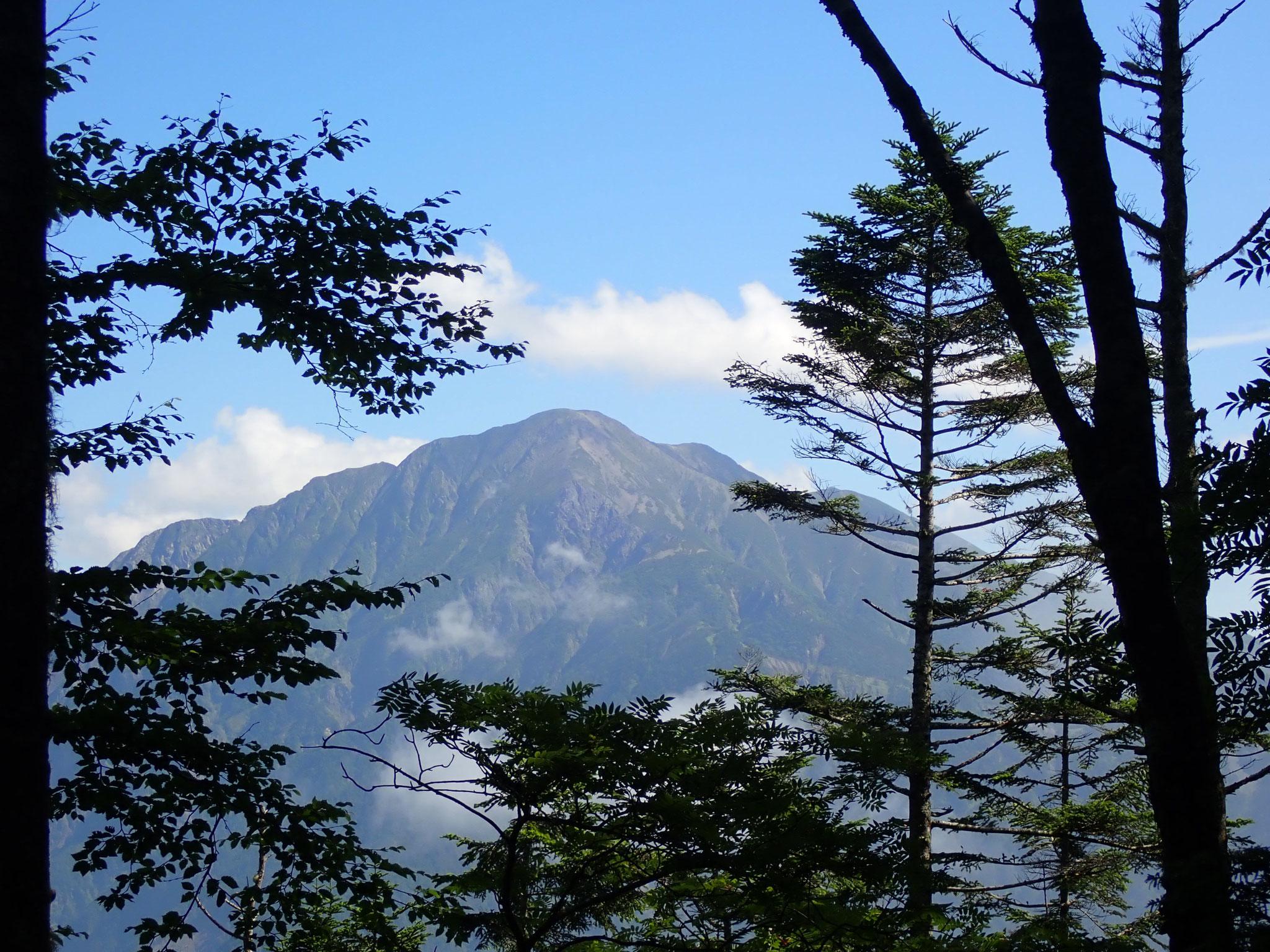易老岳手前から、聖岳が見えてくる。
