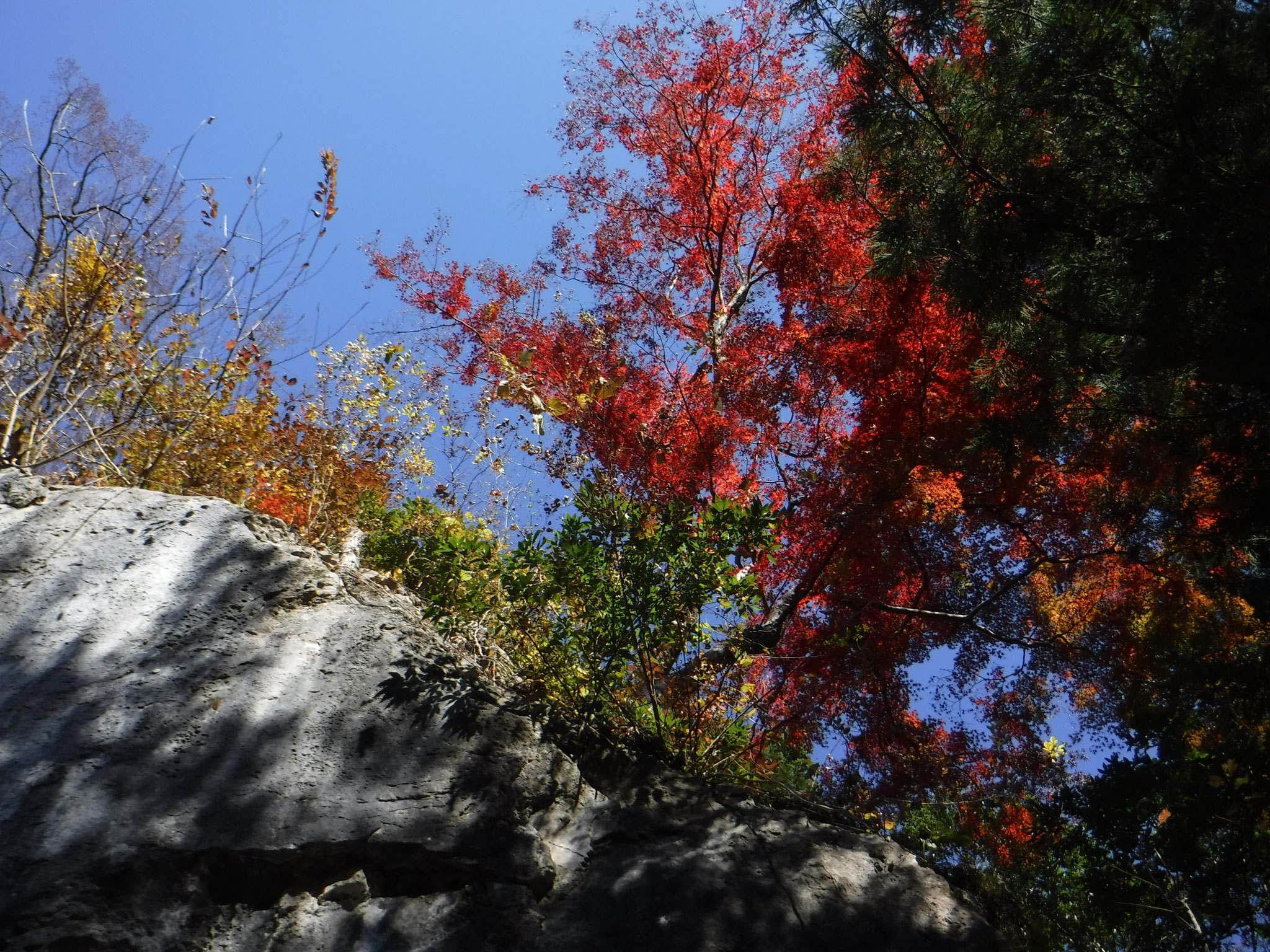 9:40 白髭神社、石灰岩の巨岩が露出している
