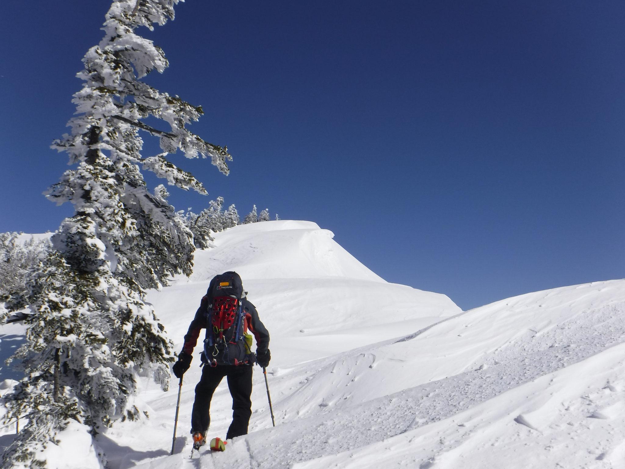 窓明山稜線、上部は雪庇で起伏が大きい