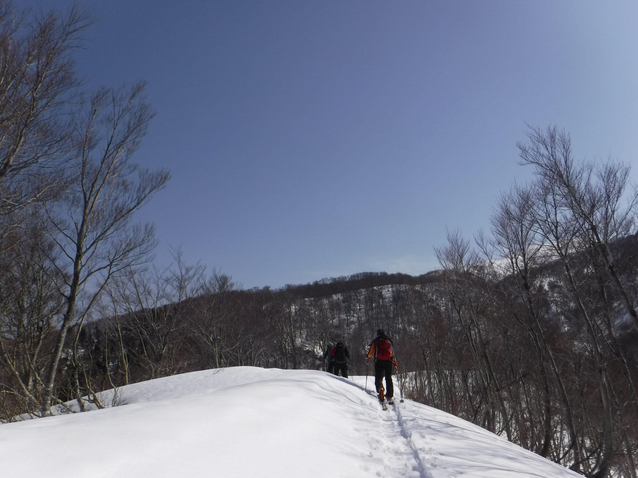 9:10 長峰(705m)付近からすっきりとしたルートになる
