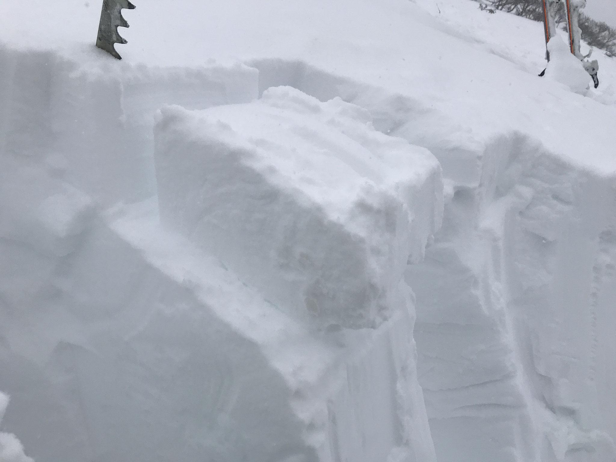 積雪は2m程度