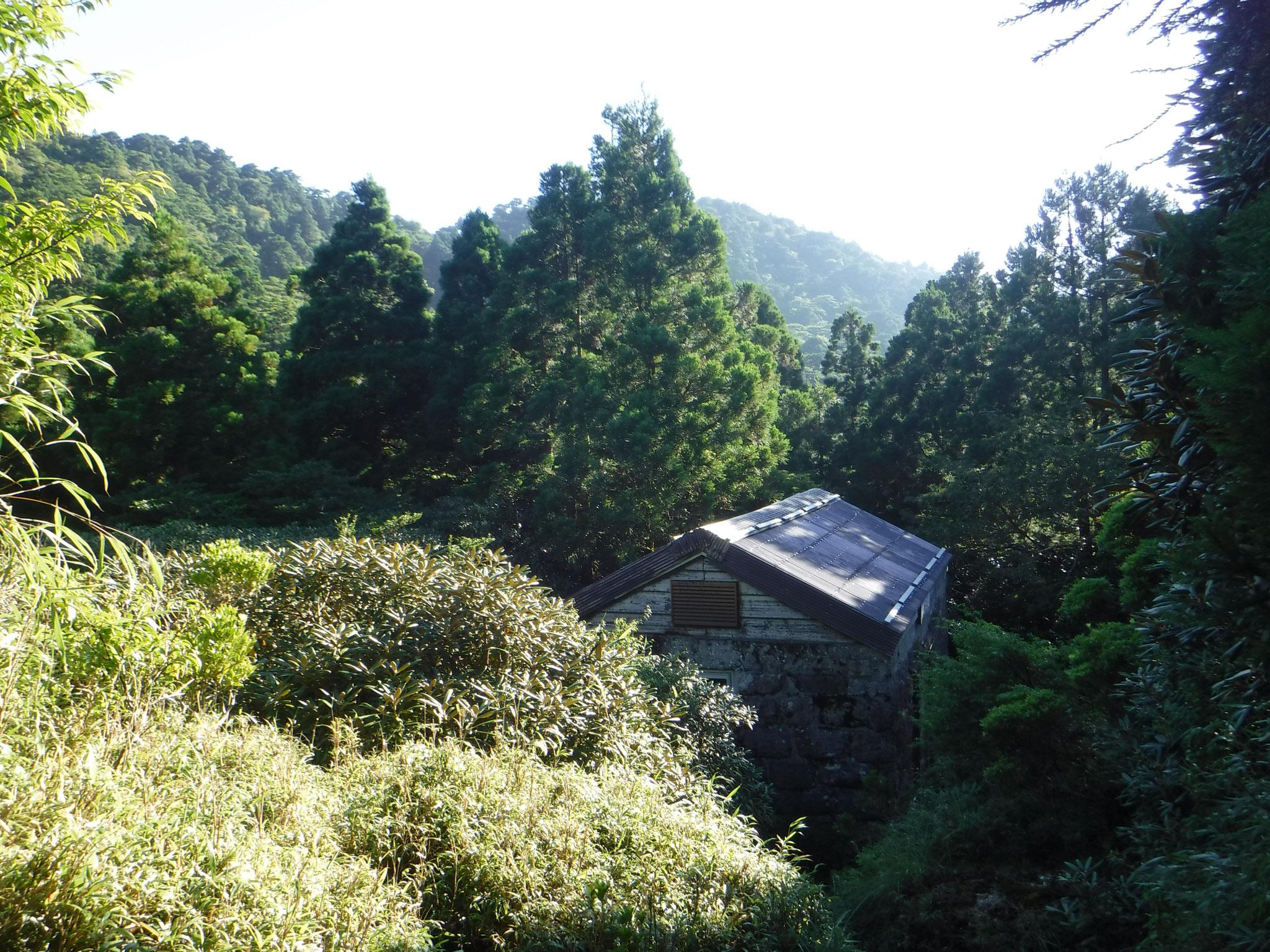 小屋は樹林に囲まれ、展望は無い