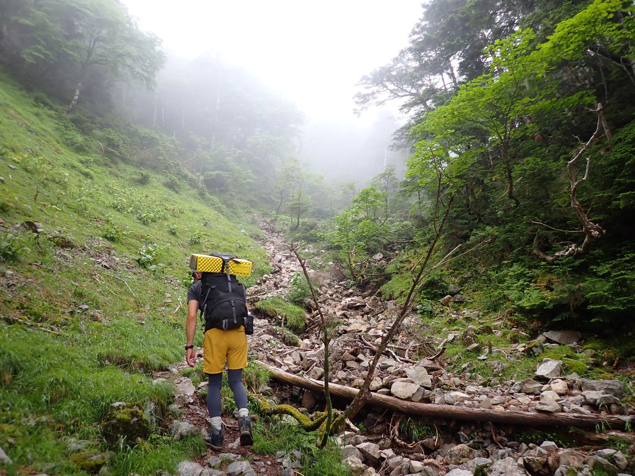 雨だと難儀しそうな、静高平へのガレた登り