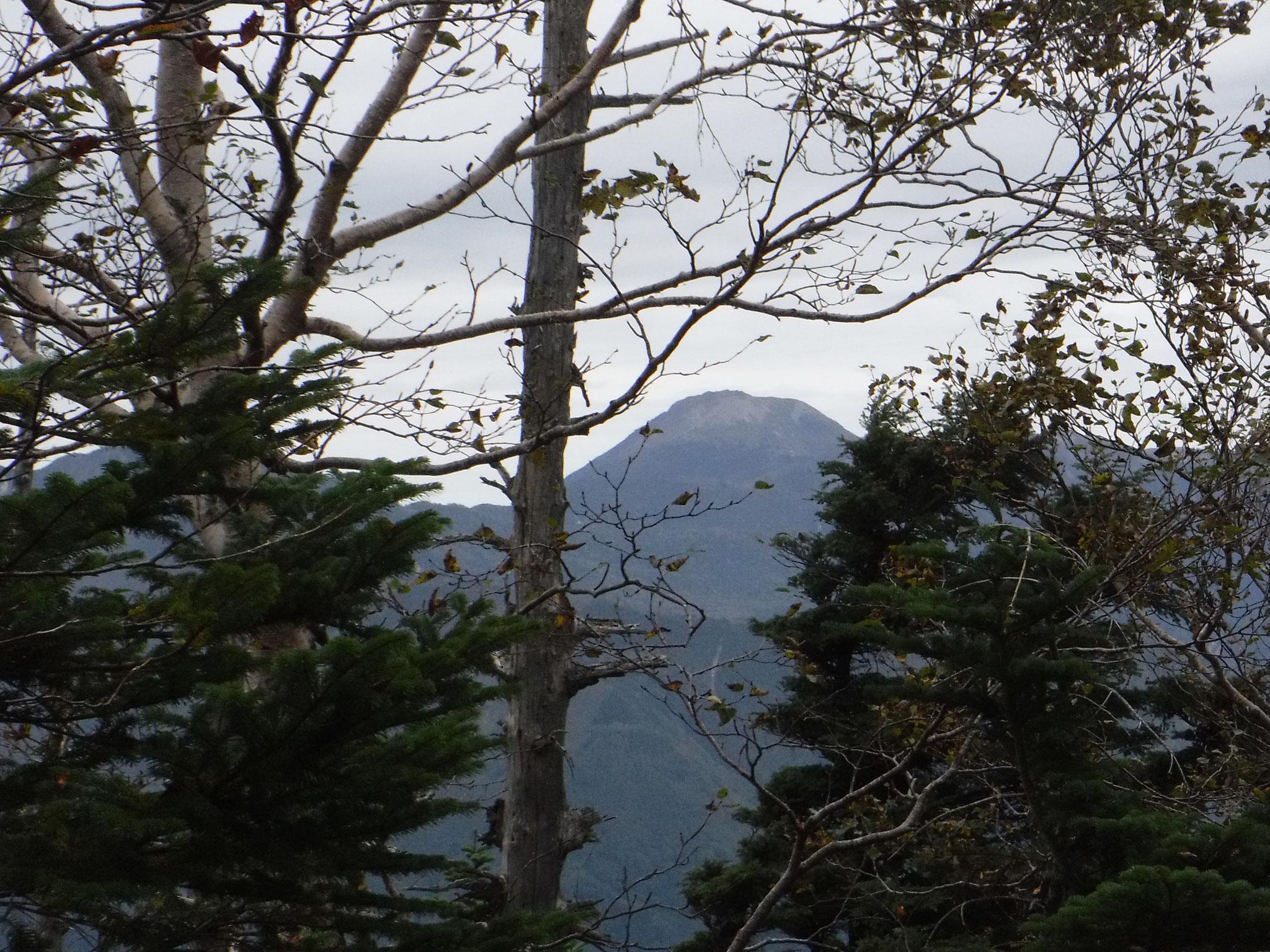 山頂から日光白根山