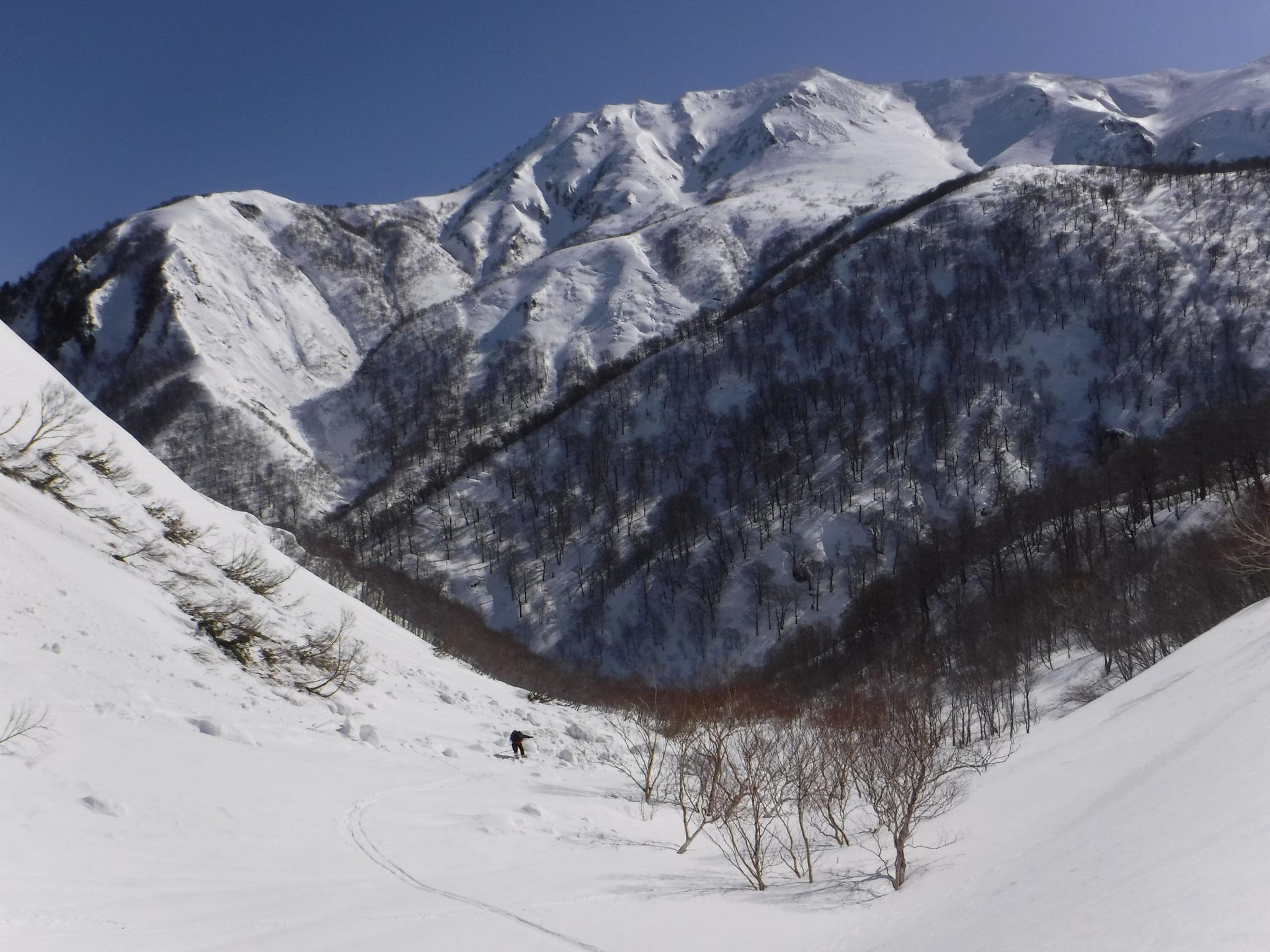対岸の万太郎山西面も素敵な斜面