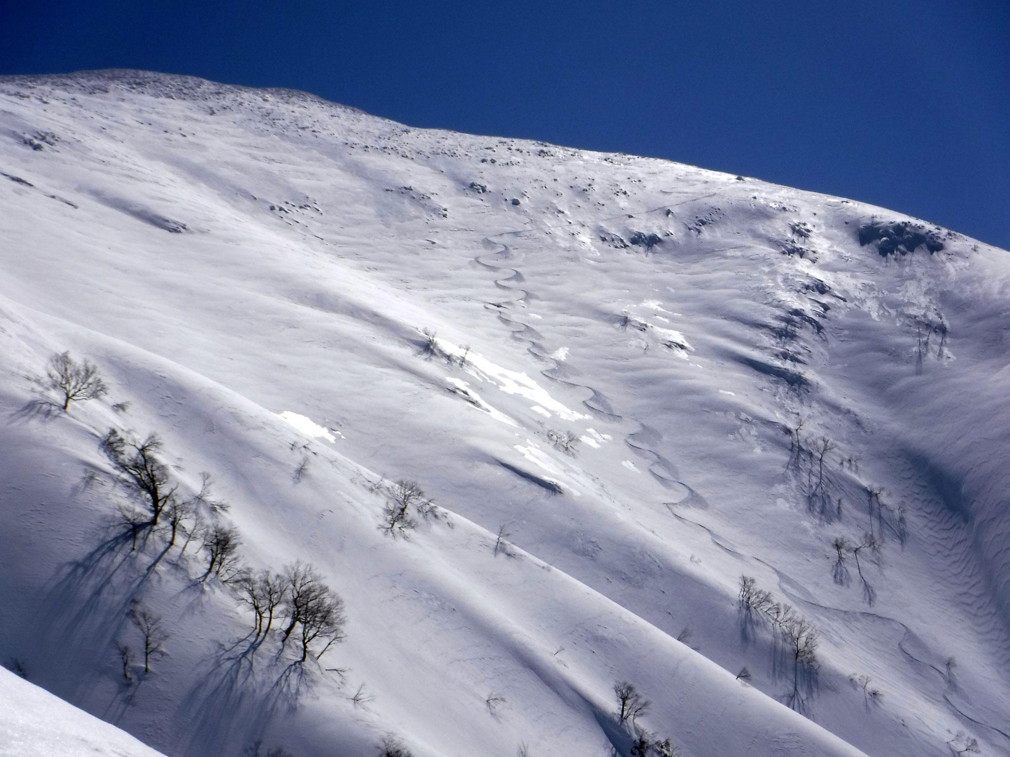 11:00 1500m付近より、山頂からのシュプール、雪煙をあげていた
